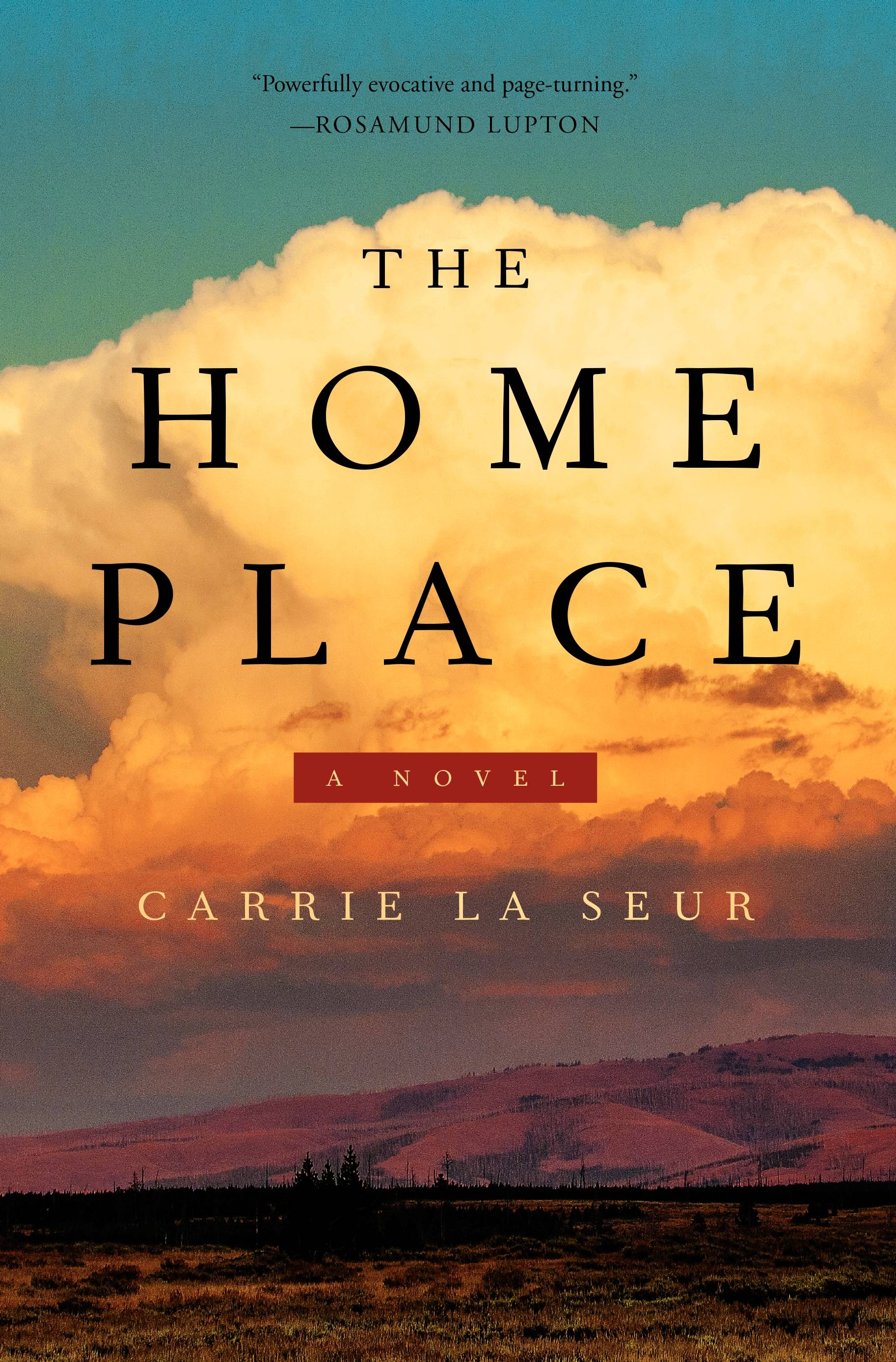 "Carrie La Seur chronicles a woman's complicated relationship with her hometown of Billings, Montana, and her relatives who stayed behind in ""The Home Place."""