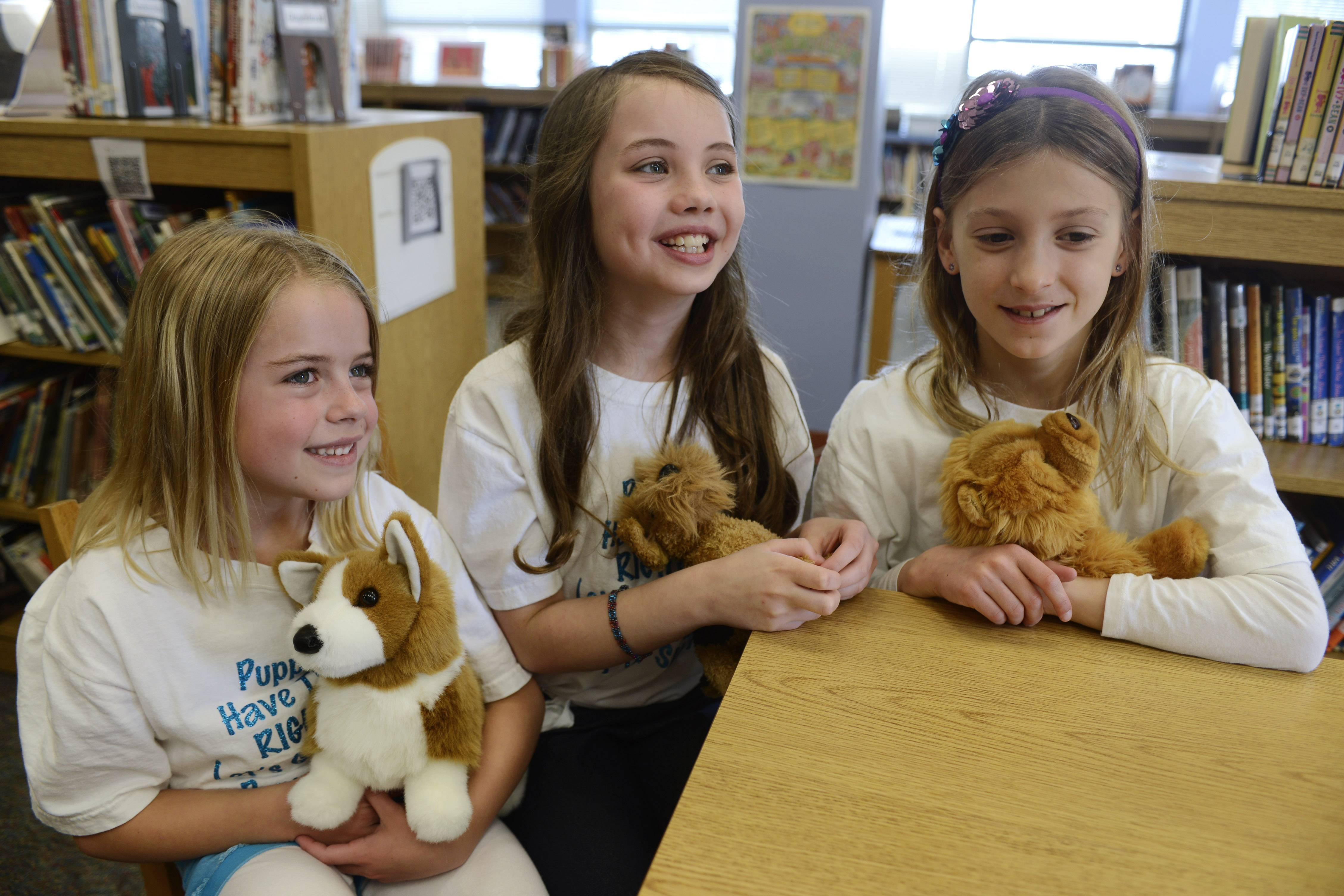 Left to right, Patton School third graders Claire Hackmann, 8, Maddie O'Dell, 9, and Brooke Martin, 8, talk about their recent presentation before the Illinois State Legislature urging them to pass a bill outlawing puppy mills in Illinois.