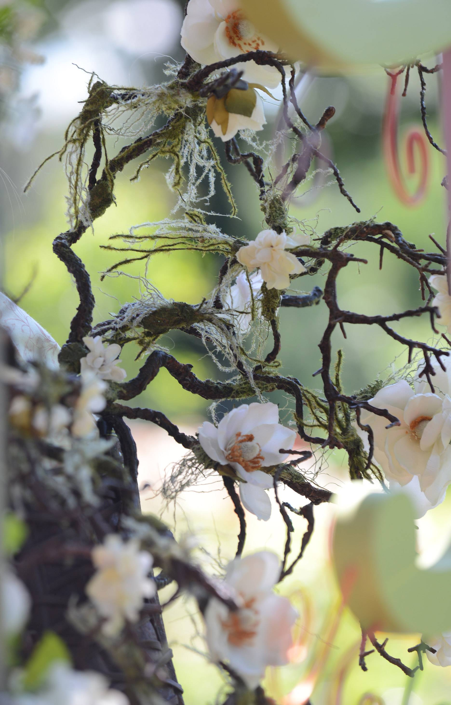 At last year's World of Faeries Festival, fairy wings were made of branches and covered in flowers and spider webs.