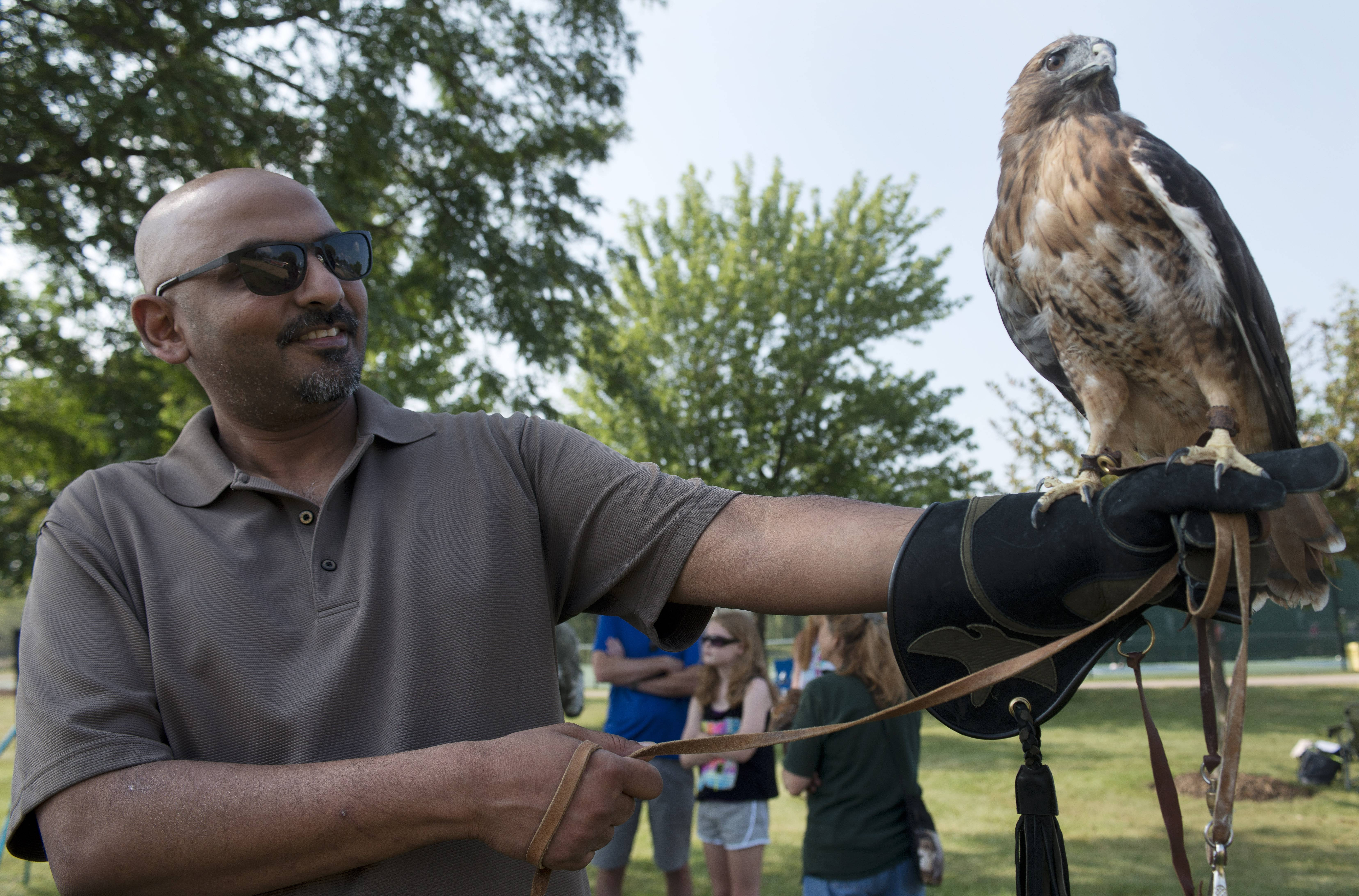 Nabeel Rasheed of the Northern Illinois Raptor Center holds a red-tail hawk Saturday during the Party in the Park at Highpoint Park in Hoffman Estates.