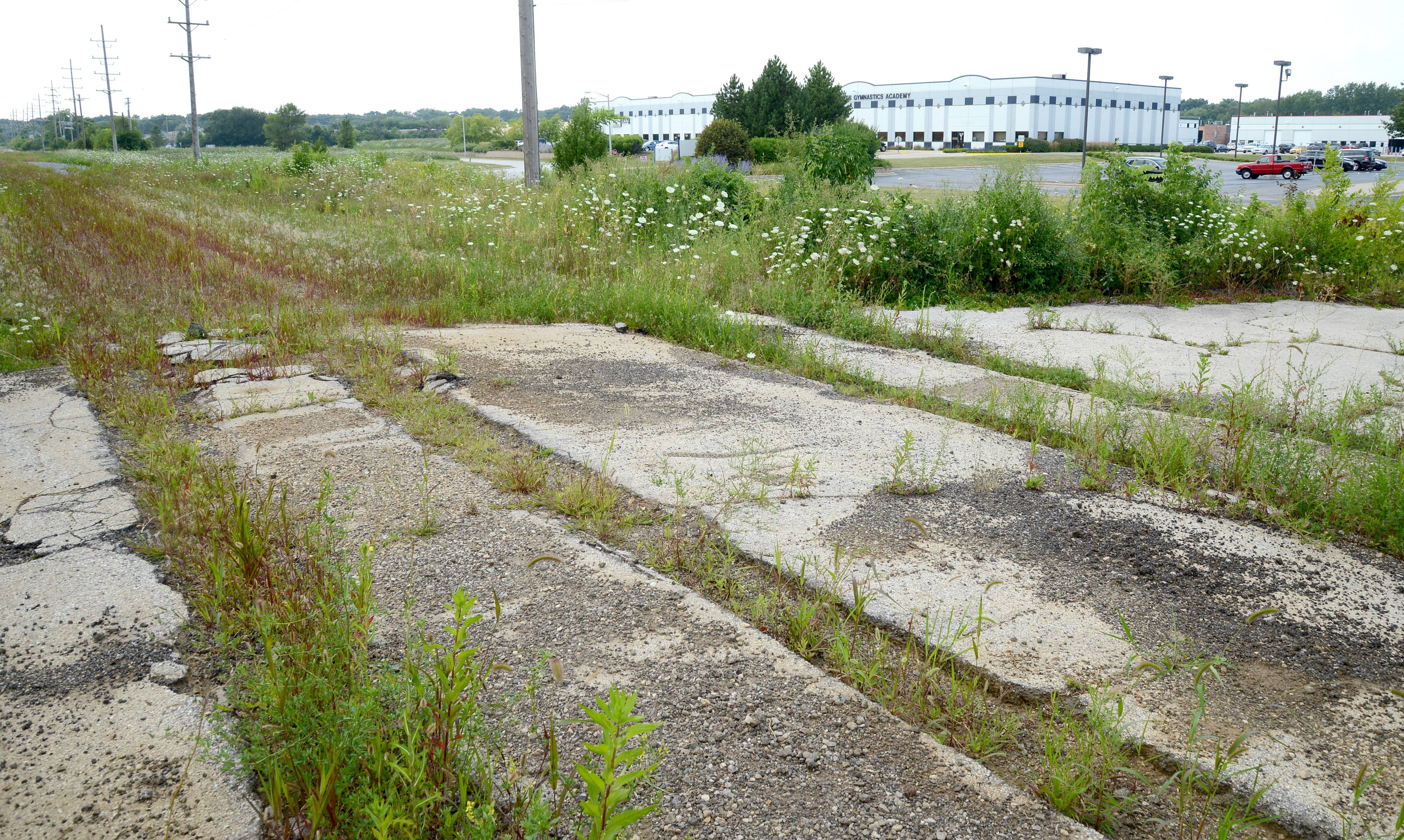An abandoned railroad line (tracks have been removed) where DeBruyne Street dead ends is near where Moline Malleable once stood in St. Charles. The area is now a commercial sector, with an indoor soccer venue and other businesses.
