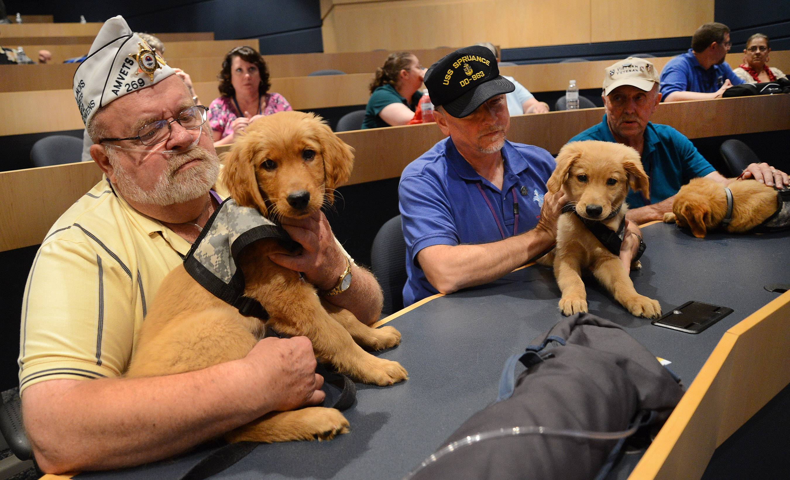 From left, Raleigh Showers of McHenry with his dog Spike, Richard Skinner of Westmont with his dog Apache, and Bob Royce of Schaumburg and his dog Blitz. The Vietnam veterans are training to be dog handlers as part of Lutheran Church Charities Kare-9 Ministry.