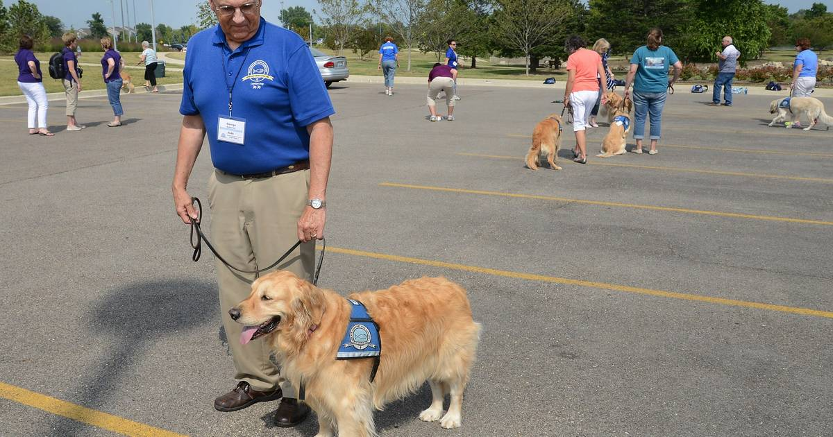 Comfort Dog Ministry launches program to help vets