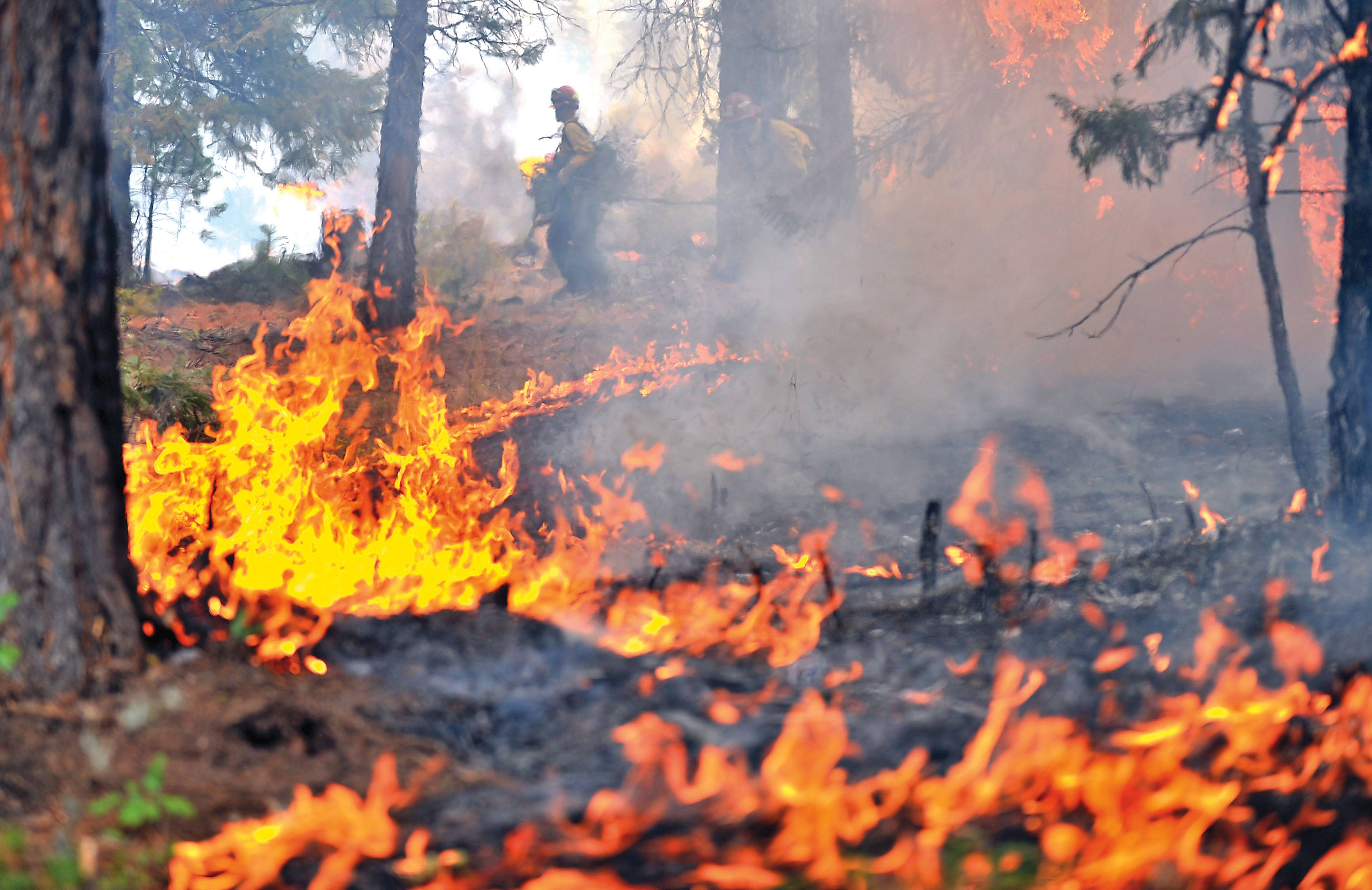 A 20-person handcrew from JC Orozco Reforestation conducts a burn out operation on the western flank of the Oregon Gulch Fire burning south of Highway 66 in the area of the Soda Mountain Wilderness in Oregon. Officials said the fire was started by lightning on Thursday.