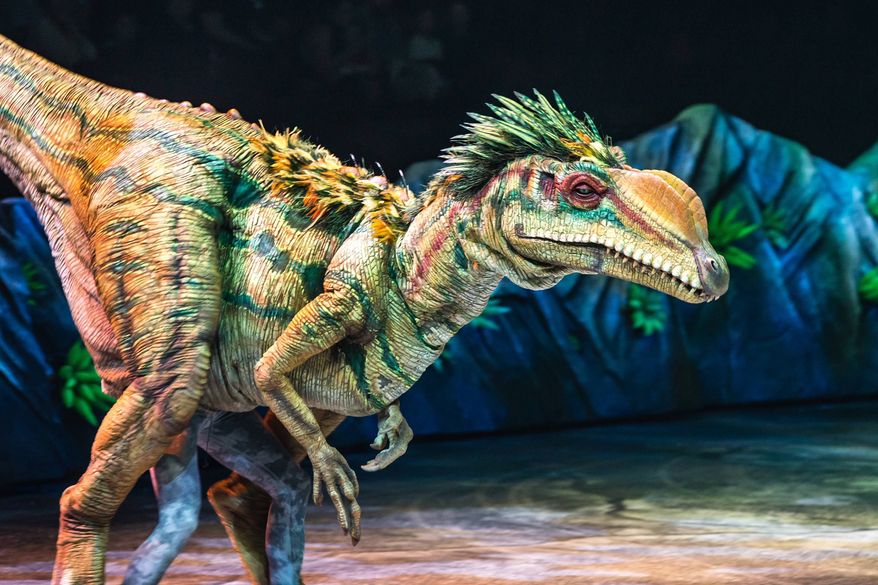 "This lifelike dinosaur is part of the ""Walking With Dinosaurs, the Arena Spectacular,"" which is currently touring the U.S. and Canada."