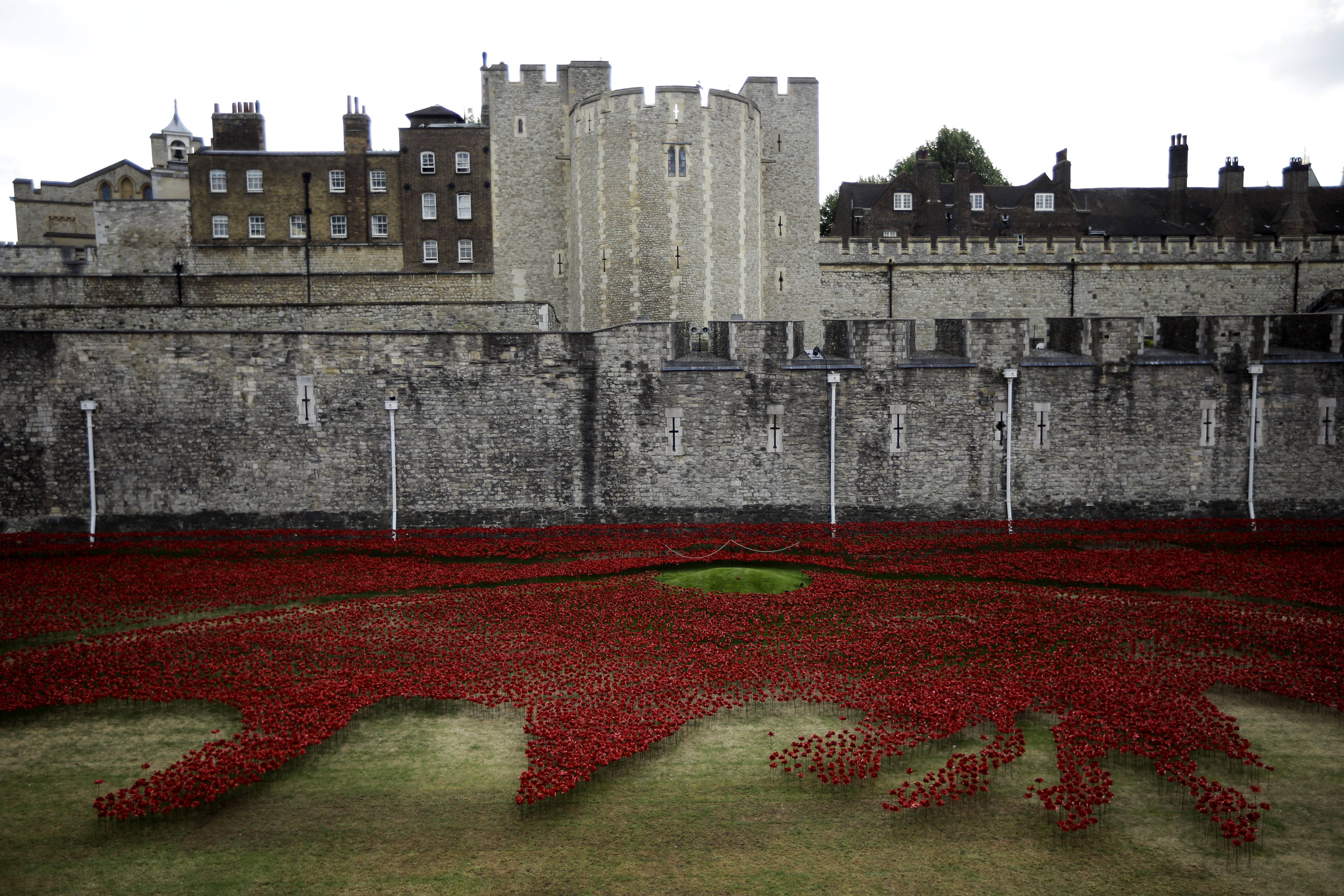"Ceramic poppies form part of an art installation laid out in the dry moat of the Tower of London in London. The installation of 888,246 ceramic poppies by ceramic artist Paul Cummins entitled ""Blood Swept Lands and Seas of Read"" was unveiled Tuesday to mark the centenary of World War I, with the final one being planted on Armistice Day on November 11. Each poppy represents a British military fatality from World War I."