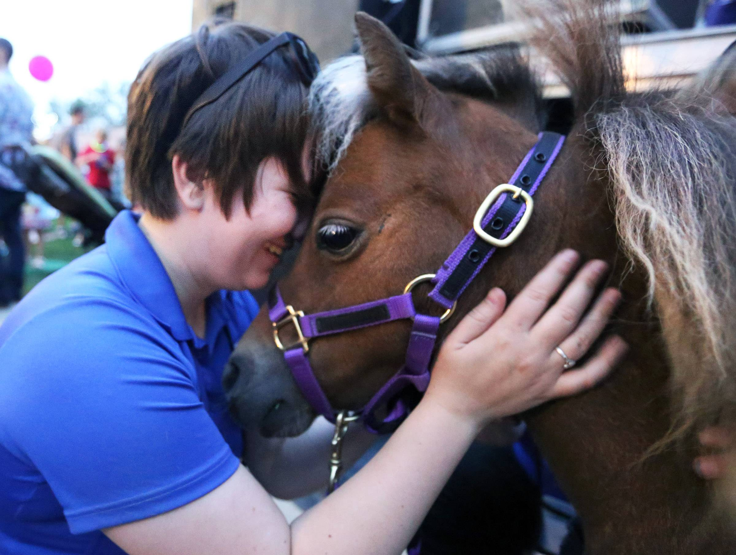 Emily Morrison of Des Plaines comforts Lunar, a miniature horse from Mane in Heaven in Lake in the Hills, during a loud sound check Friday before ceremonies to kick off Million Week in downtown Arlington Heights.
