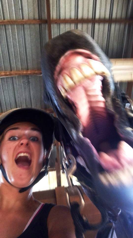 A rider and her horse react to a spider in June.