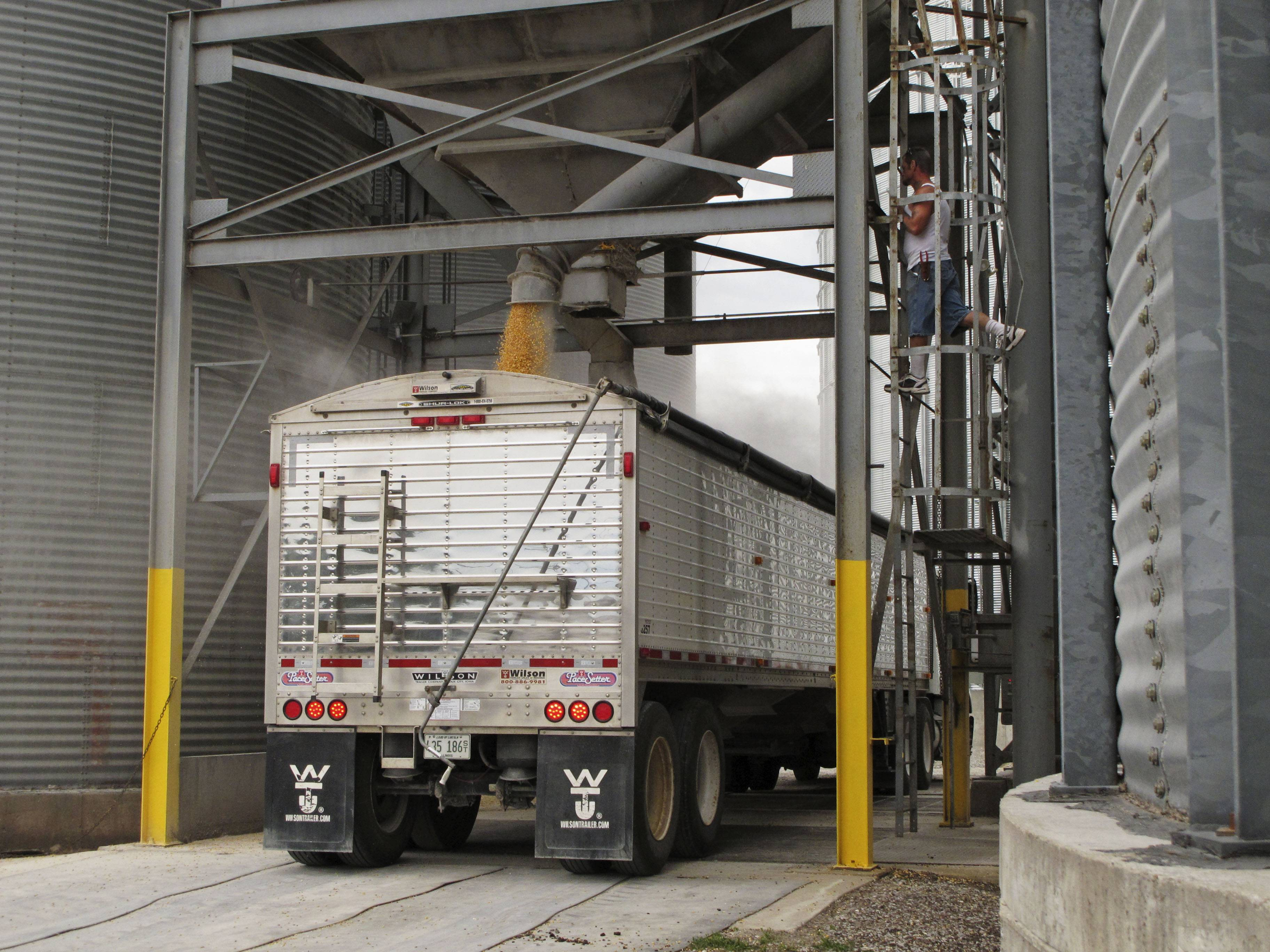 An employee of Stockland Grain Co. in Stockland, Ill., watches a truck fill with corn. Farmers coming to the grain elevator from the west and trucks taking grain from the elevator to the rail line near town for shipment use an old bridge that can't handle fully loaded trucks, forcing them to make extra trips.