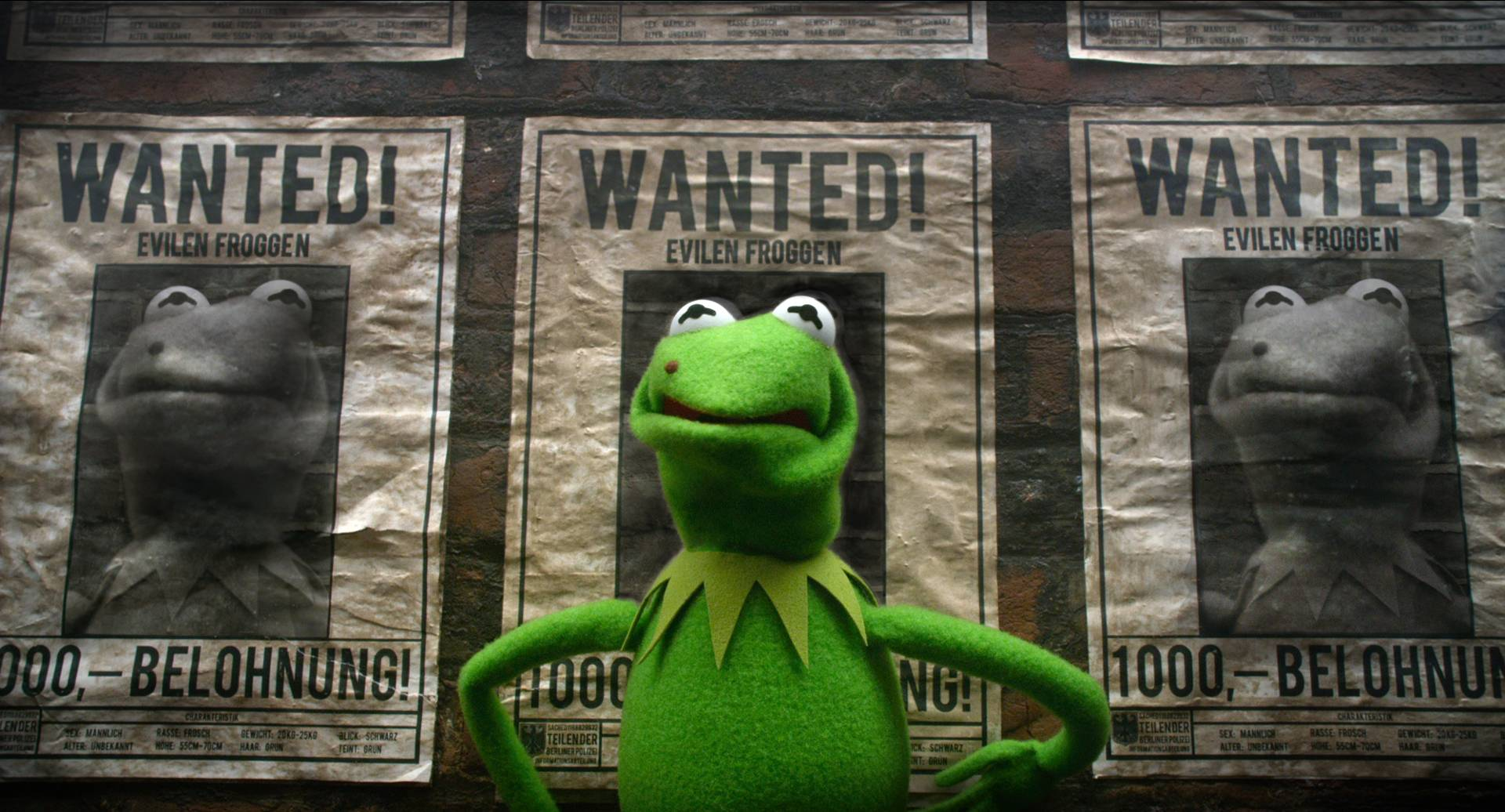 "The evil Kermit look-alike Constantine takes over the Muppets World Tour in ""Muppets Most Wanted."""
