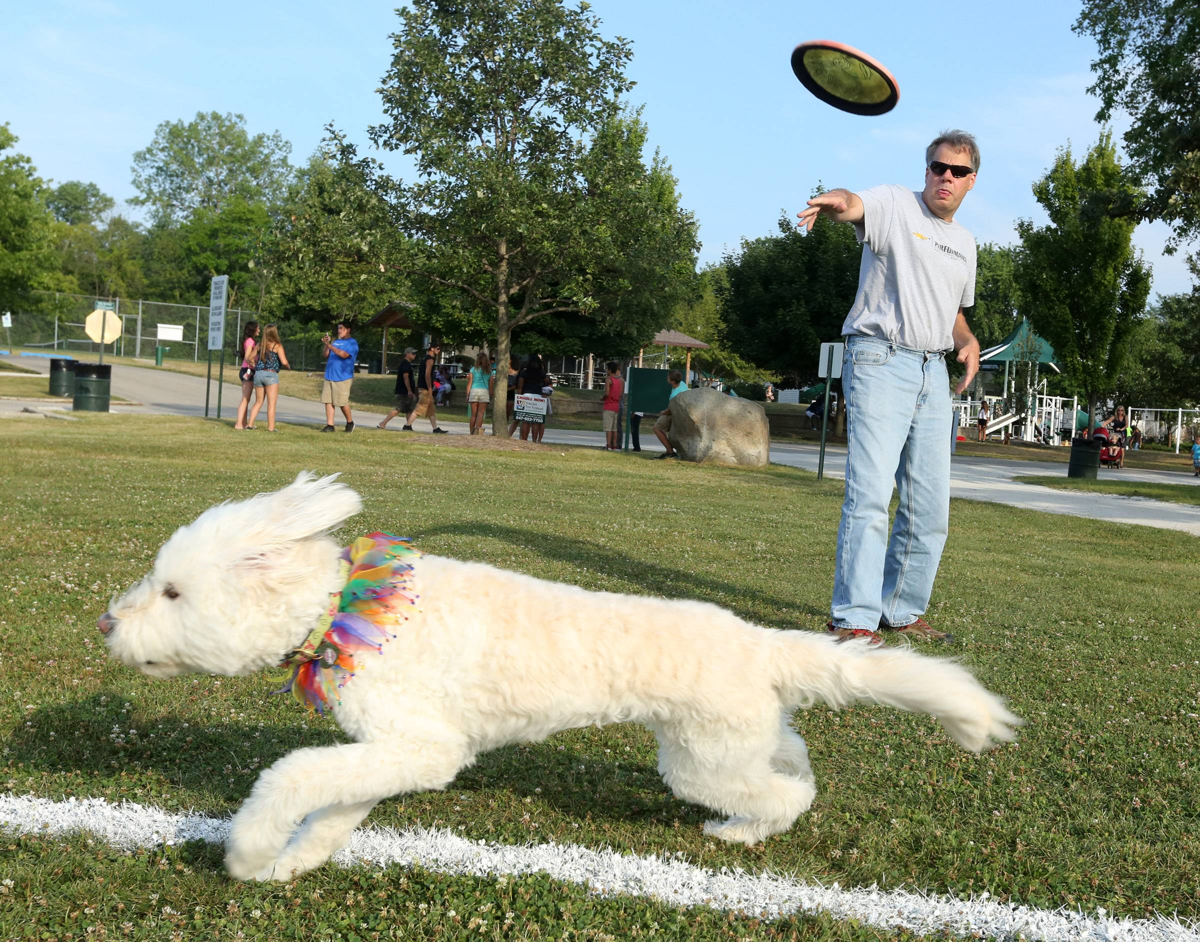 Bill Hemrich of Gurnee tosses a disc for his 9-year-old golden doodle, Lucy, to catch while warming up for the dog Frisbee championships Friday at the second day of Gurnee Days.