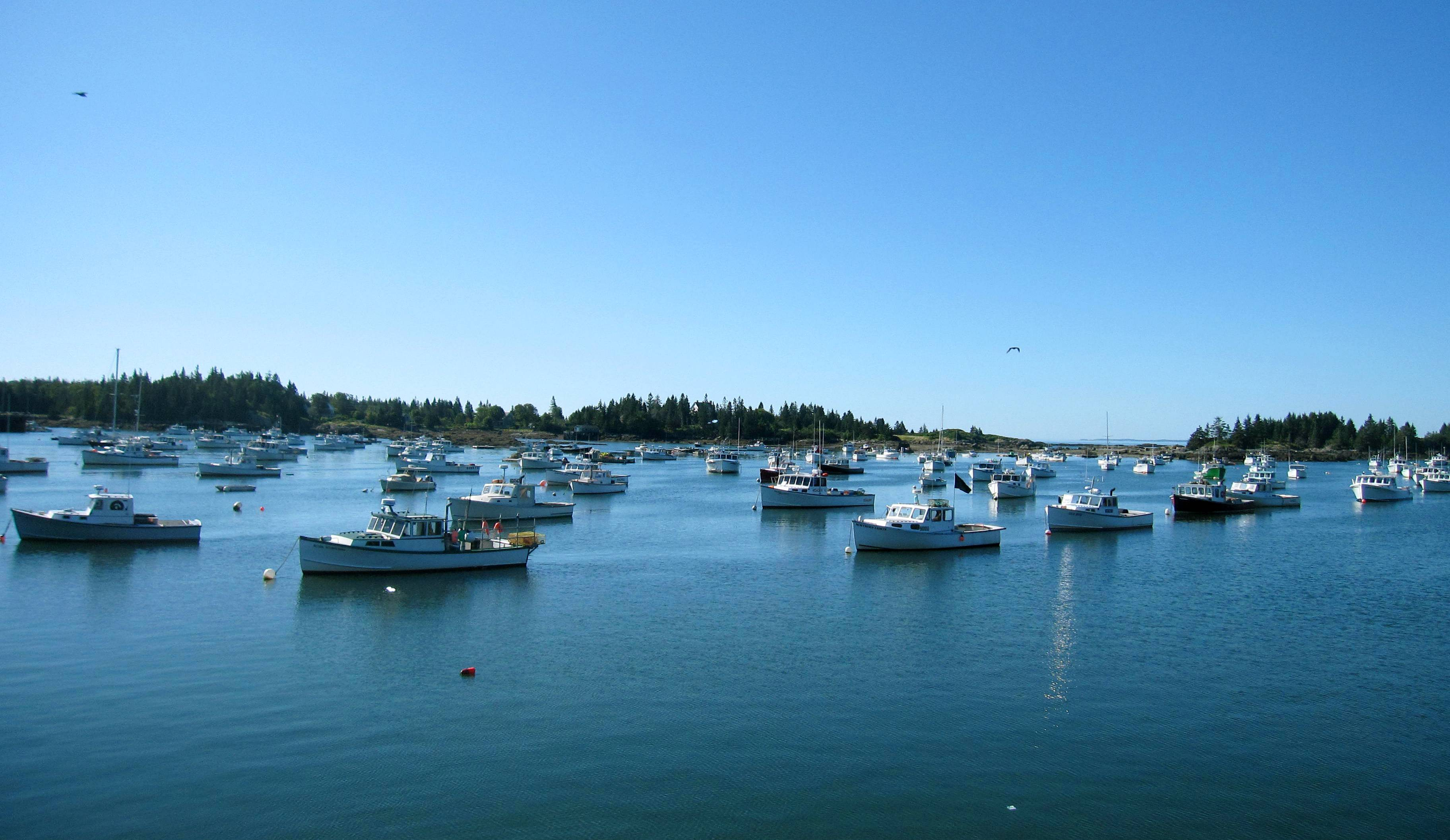 A 75-minute ferry connects Vinalhaven Island, Maine, to the coastal town of Rockland on the other side of Penosbscot Bay. Vinalhaven offers summertime visitors quiet waterfront scenery, great places to bike and good food.