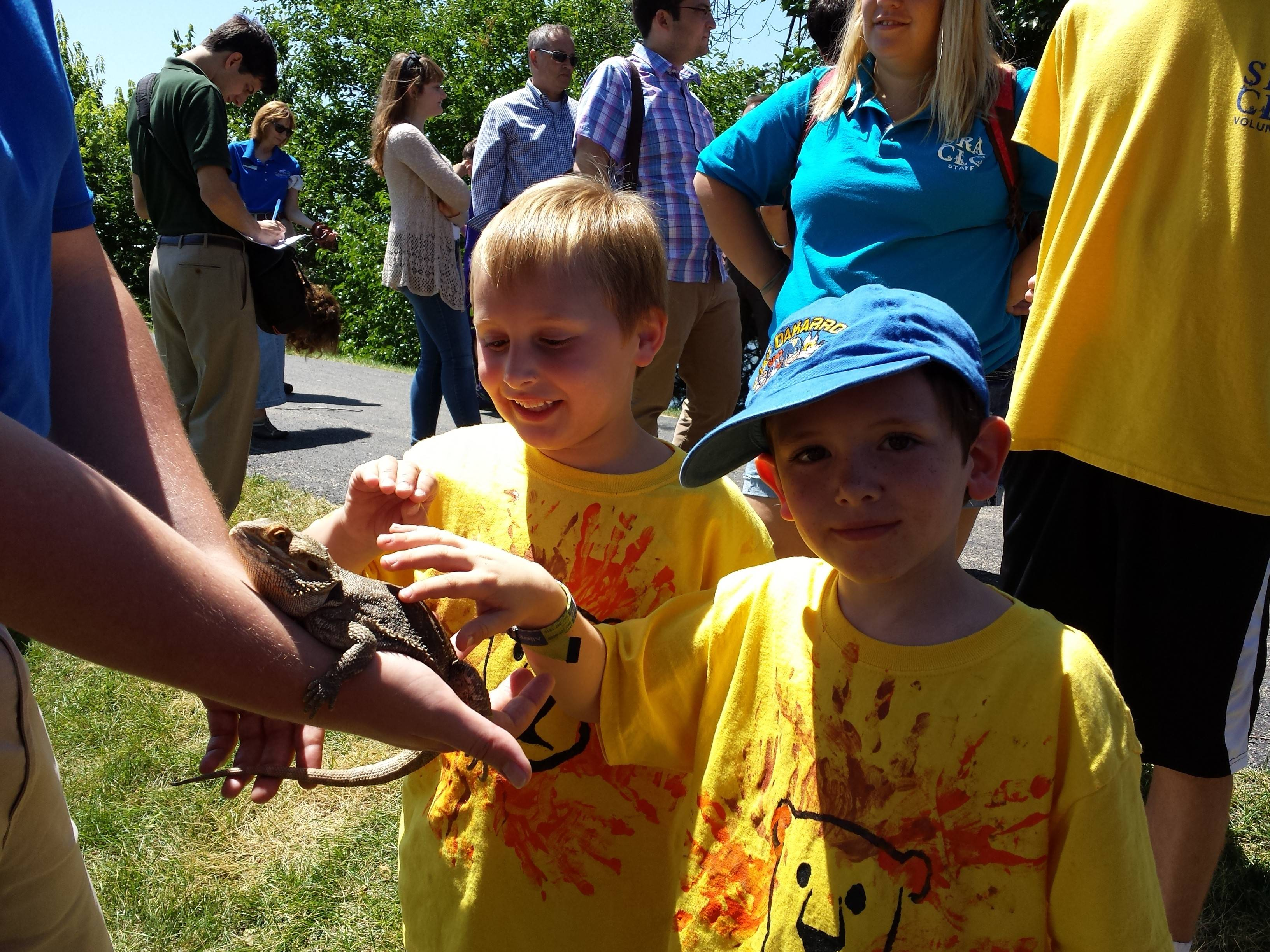 A traveling exhibit of live animals from Brookfield Zoo was one of the many attractions for SRACLC campers at the Special Recreation Association of Central Lake County's 24th Annual Family Day and Fishing Derby.