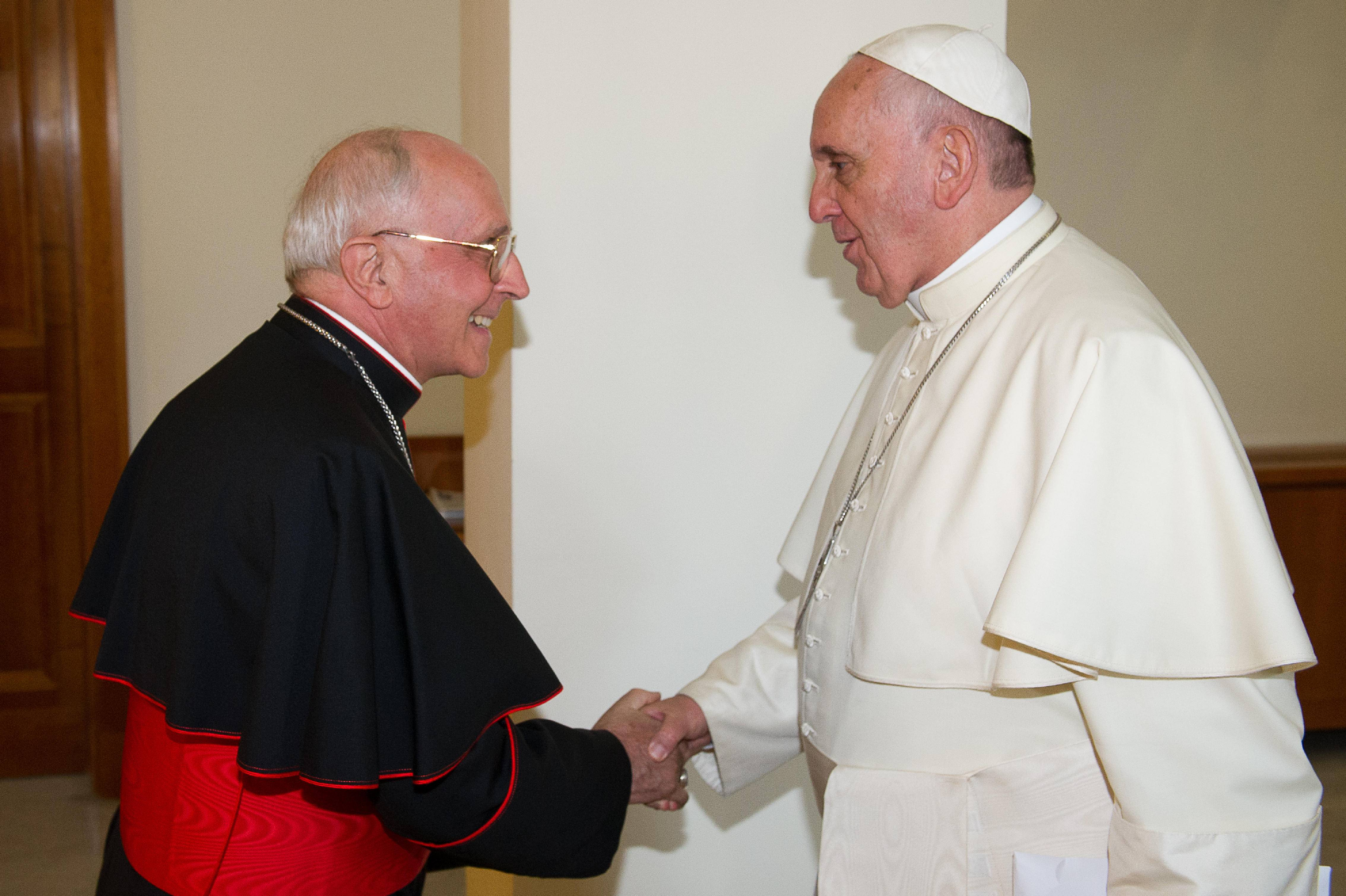 Pope Francis is sending Cardinal Fernando Filoni as his personal envoy to Iraq to show solidarity with Christians who have been forced from their homes by Islamic militants.
