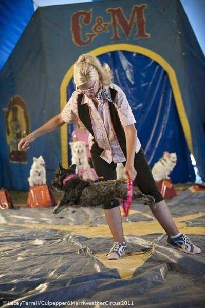 The Culpepper & Merriweather Circus will come to Hampshire Aug. 18.