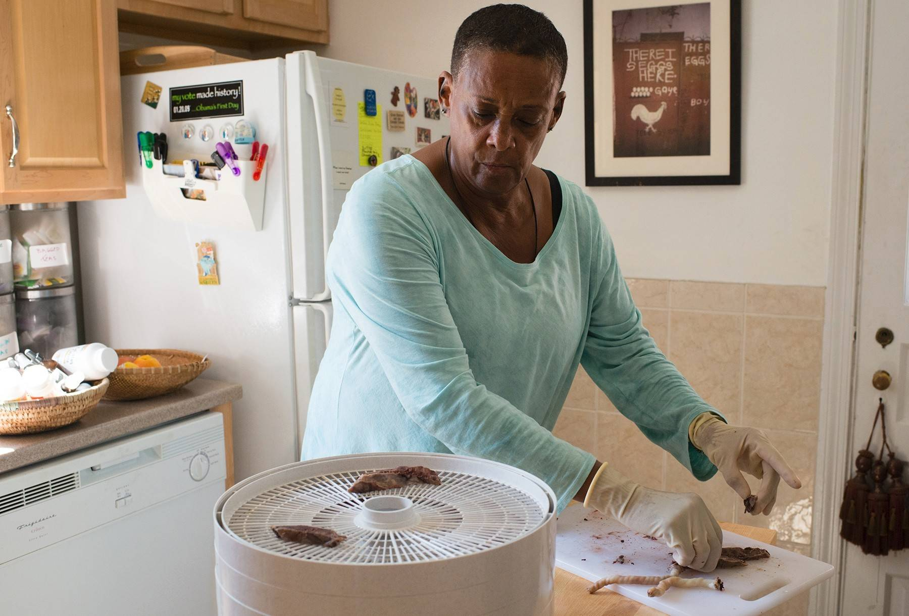 Midwife Claudia Booker places pieces of cooked placenta on a food dehydrator. This is one of the steps to turning a placenta into pills.