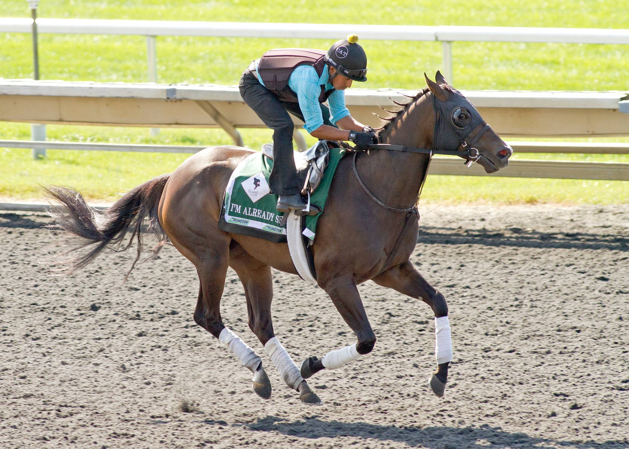 I'm Already Sexy, a 4-year-old filly who was a $20,000 purchase, is competing in the biggest race of her career today, the $750,000 Beverly D. at Arlington International Race Course.