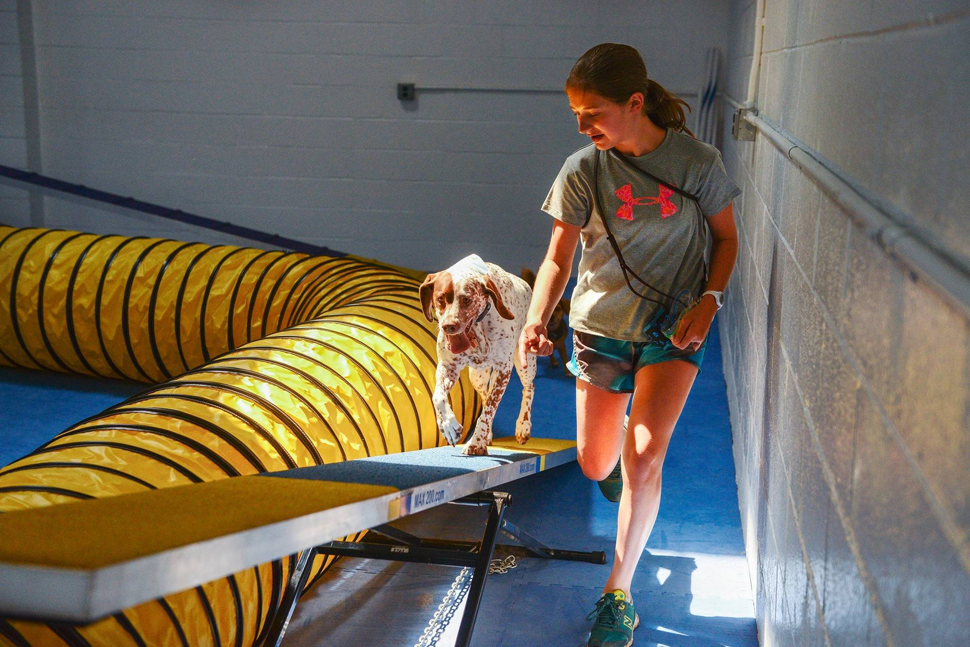 Leah Nickelsburg helps Luna burn calories on the agility course at Frolick Dogs. Industry observers think that the idea of dog gyms will be embraced in a country that spends more than $300 million a year on pet Halloween costumes.