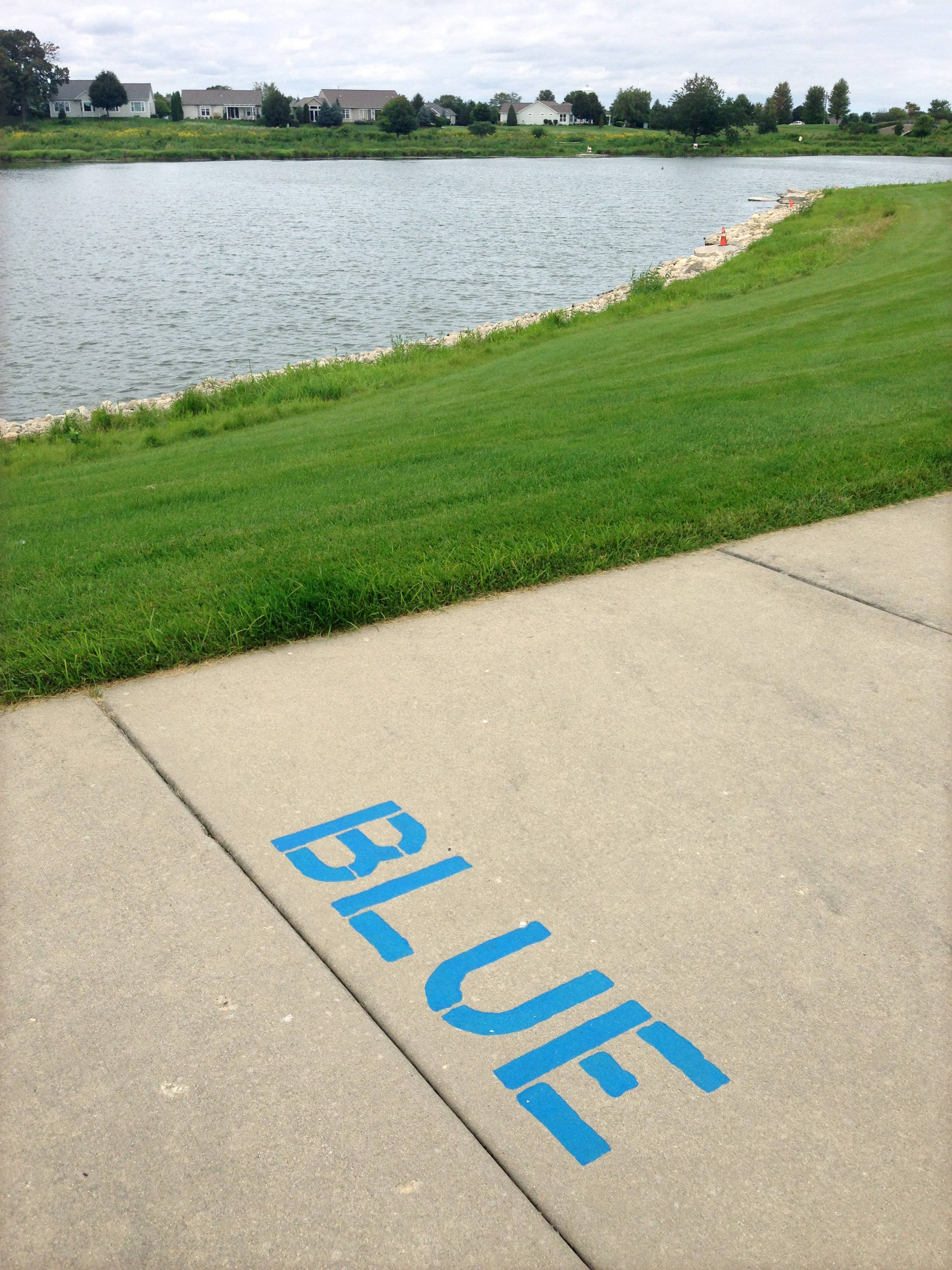 Wildflower Lake in Sun City Huntley has been contaminated and 3,000 fish were killed.