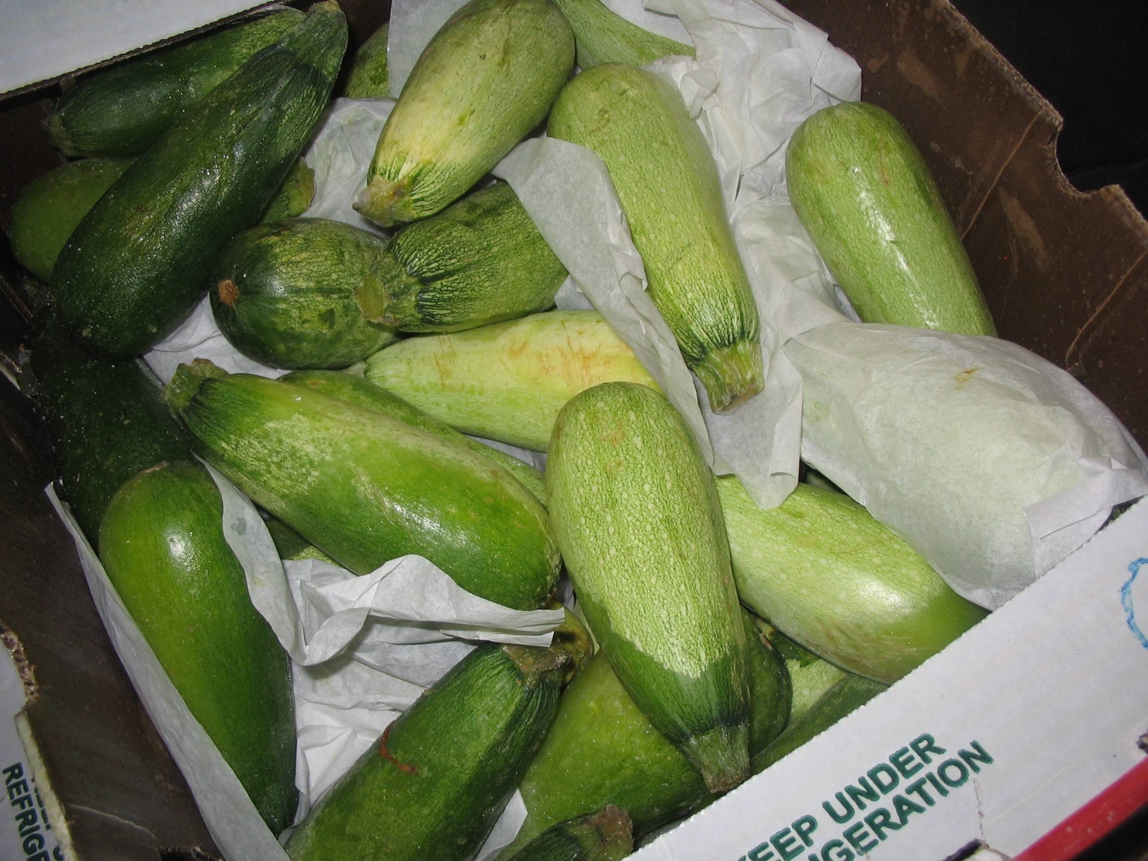 The zucchini donated to the Northern Illinois Food Bank in this 2010 photograph apparently did find new homes. The food bank currently is accepting zucchini donations from this year's bumper crop.