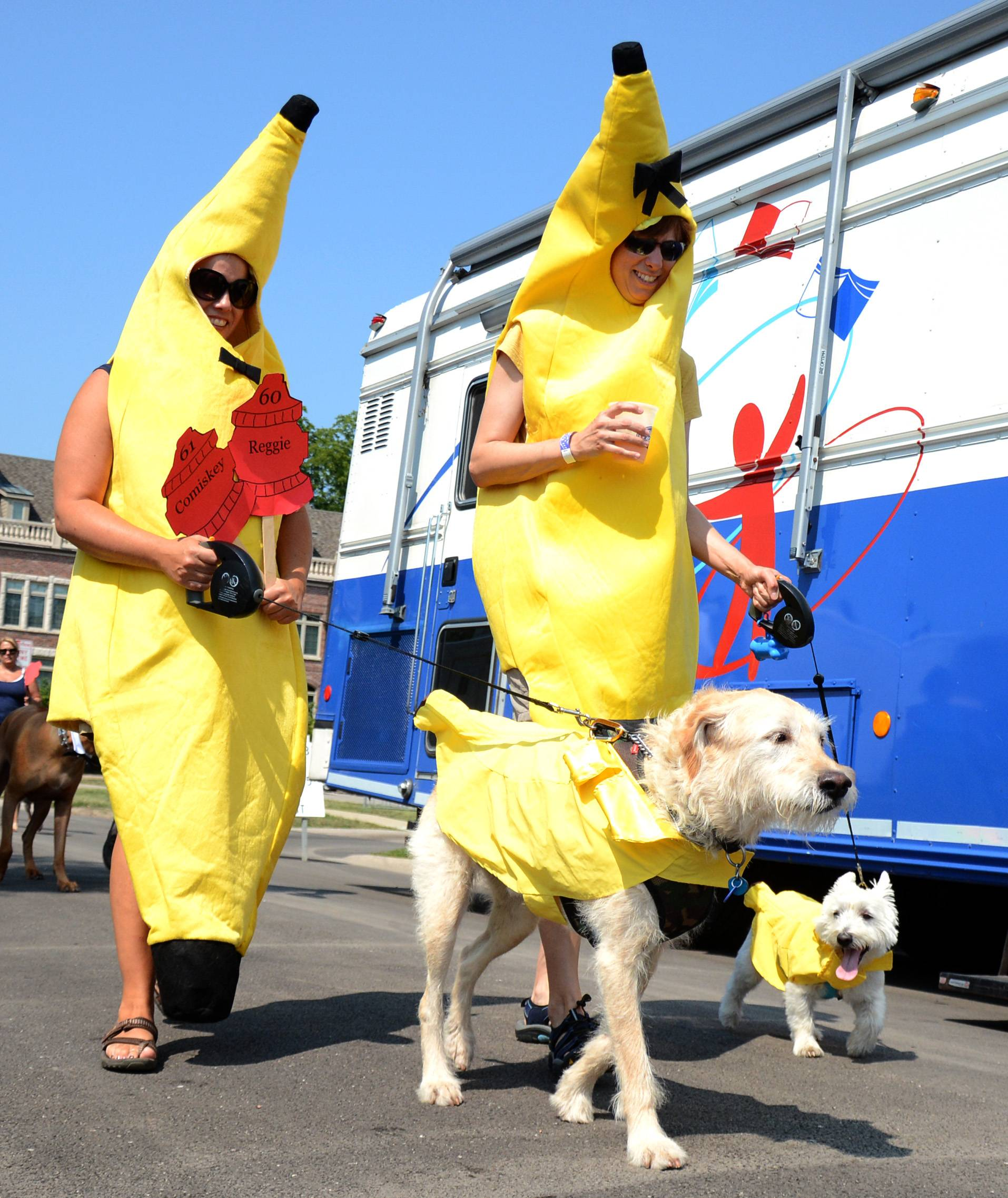 Pet owners and their companions are encouraged to dress up Sunday for the annual Sweet Pea Pet Parade in downtown Palatine. The parade kicks off at 11:30 a.m. at Towne Square, 150 W. Palatine Road.