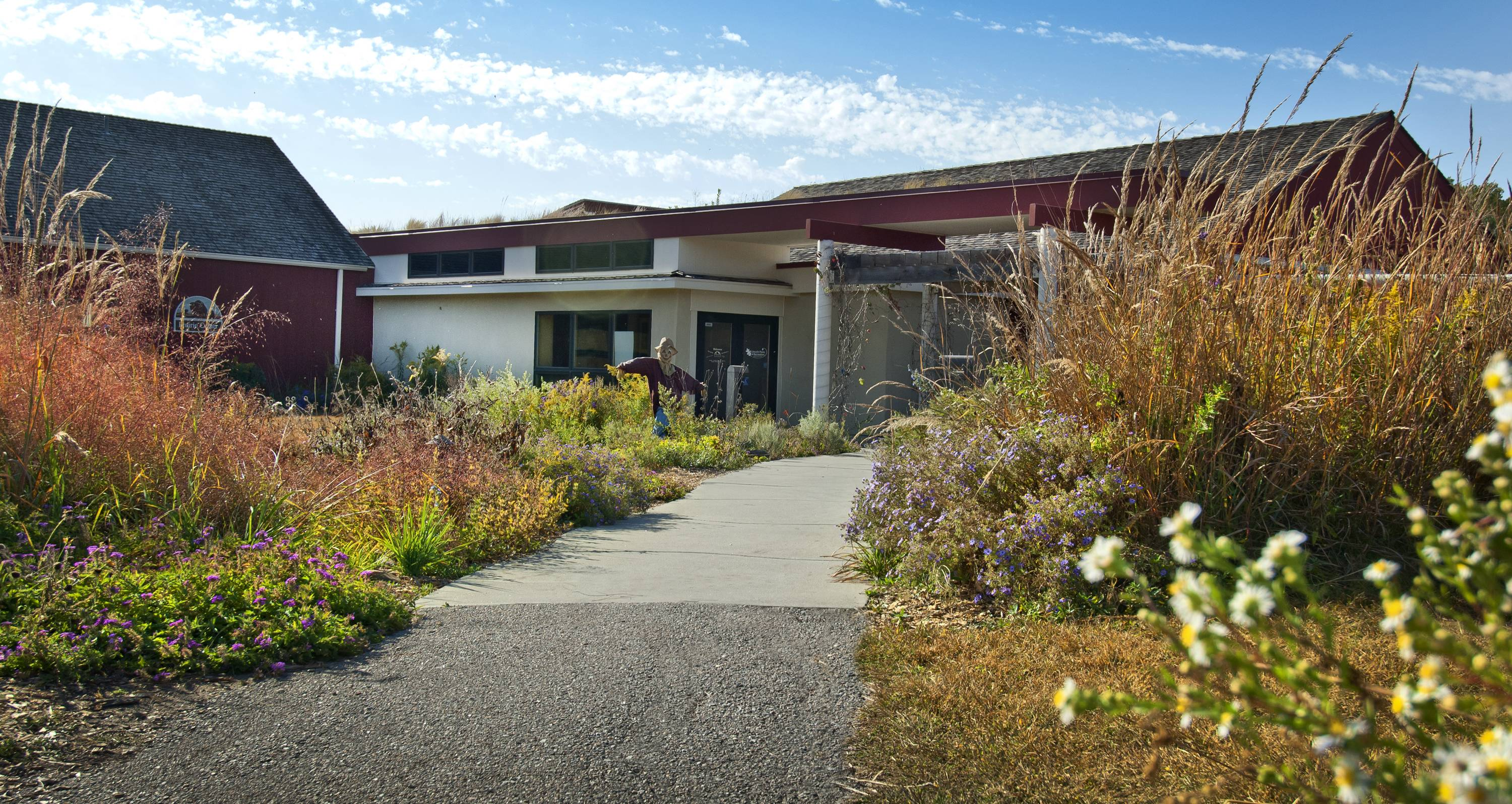 The Pioneer Park Nature Center offers exhibits, gardens, wildlife and trails through a mix of prairie, woodlands, wetlands and streams. It's one of a number of free things to see and do in Lincoln.