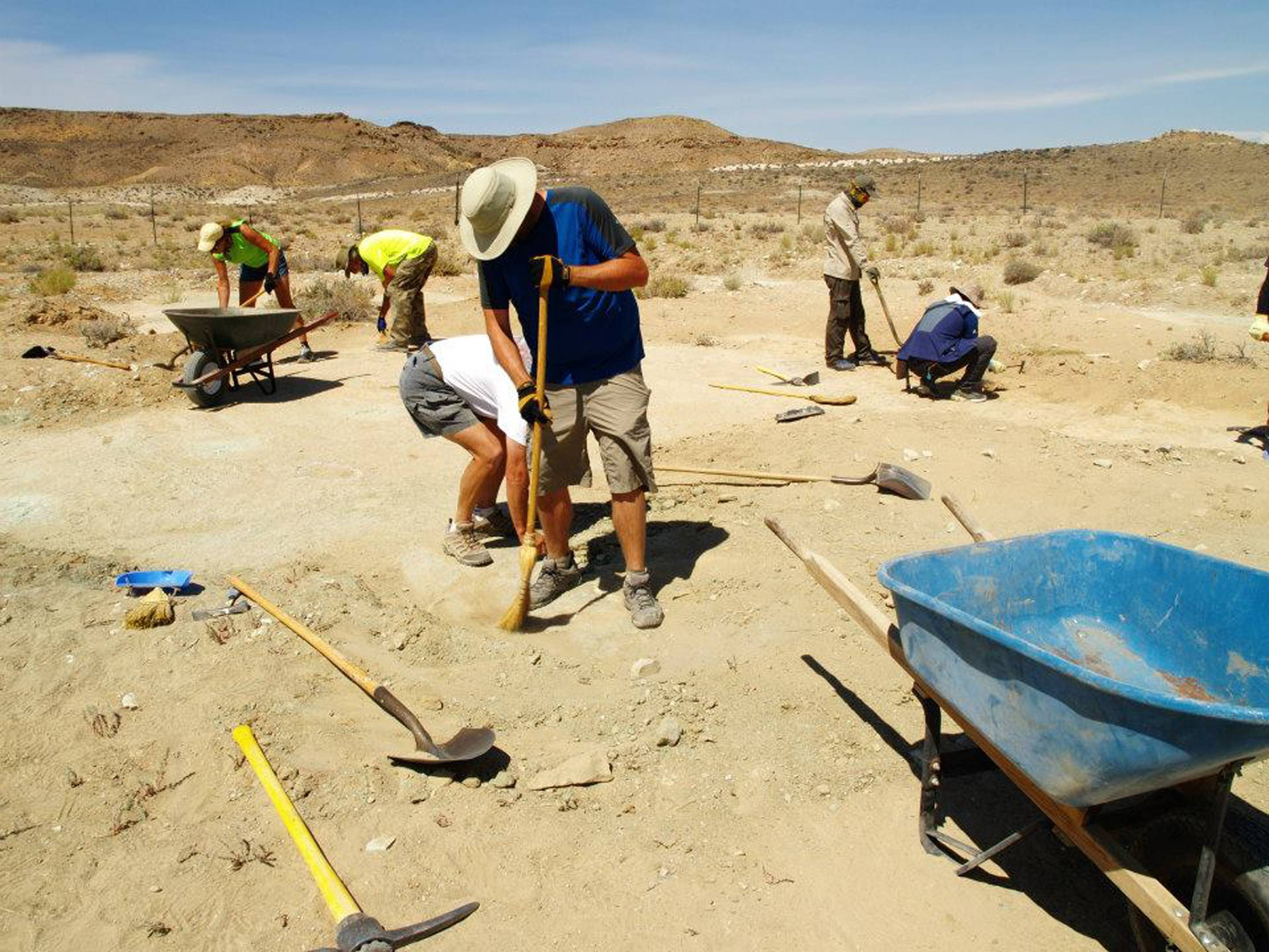 Researchers and volunteers clean the surface of a new track site on BLM lands north of Moab, Utah.