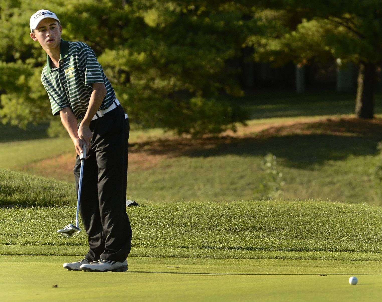 Stevenson's Luke Feder putts last season at the Arboretum Club.