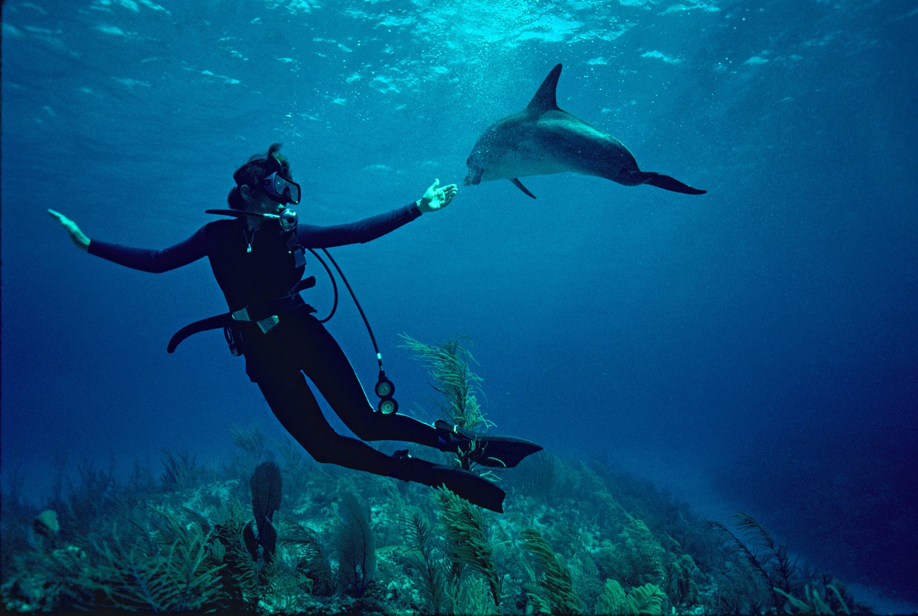 "Dr. Sylvia Earle in a scene from the Netflix documentary ""Mission Blue,"" directed by Fisher Stevens and Robert Nixon"