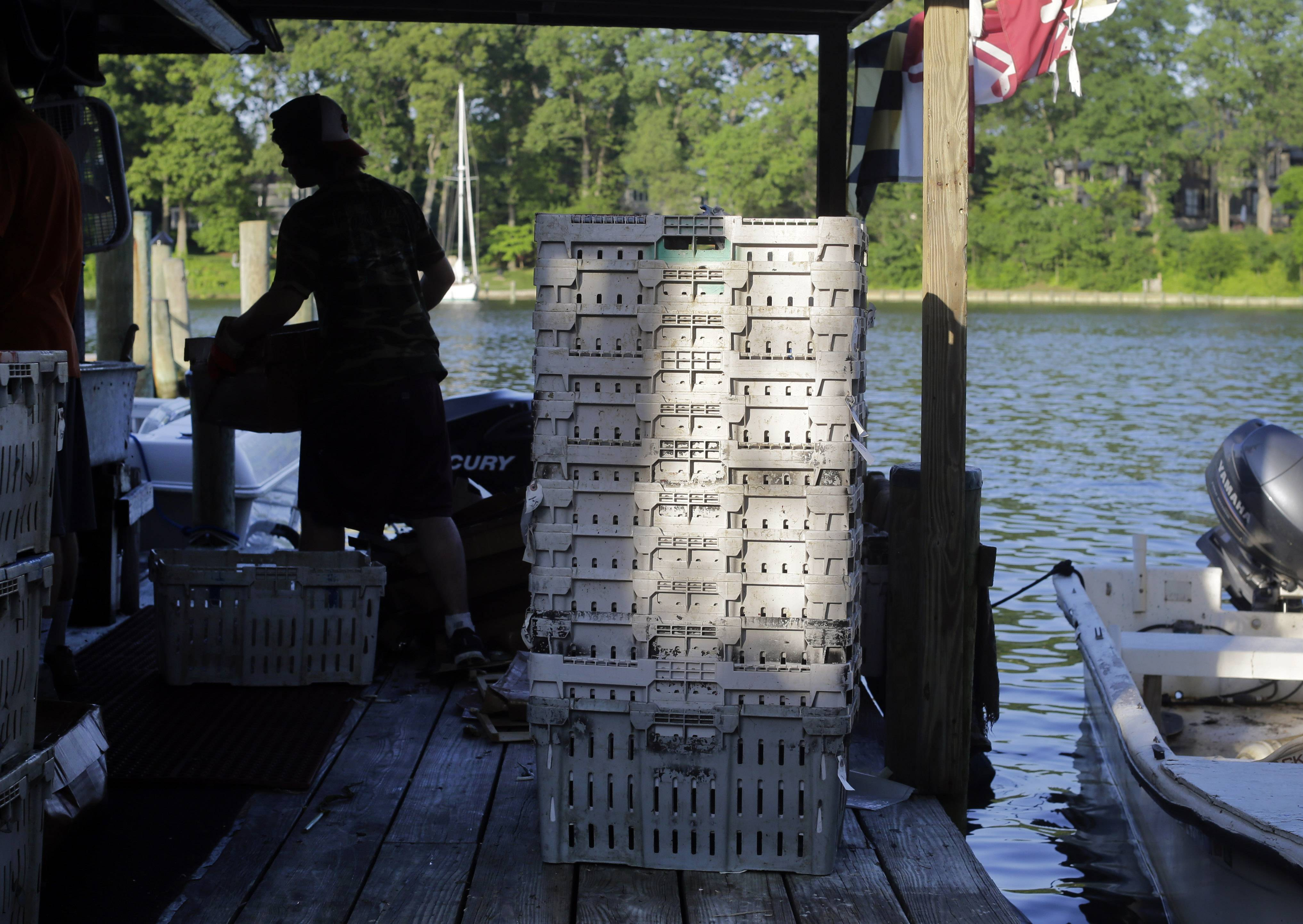 Empty crab baskets sit on a dock as employee Alex Lemmon, back left, carries a full crab basket at Jimmy Cantler's Riverside Inn in Annapolis, Md.