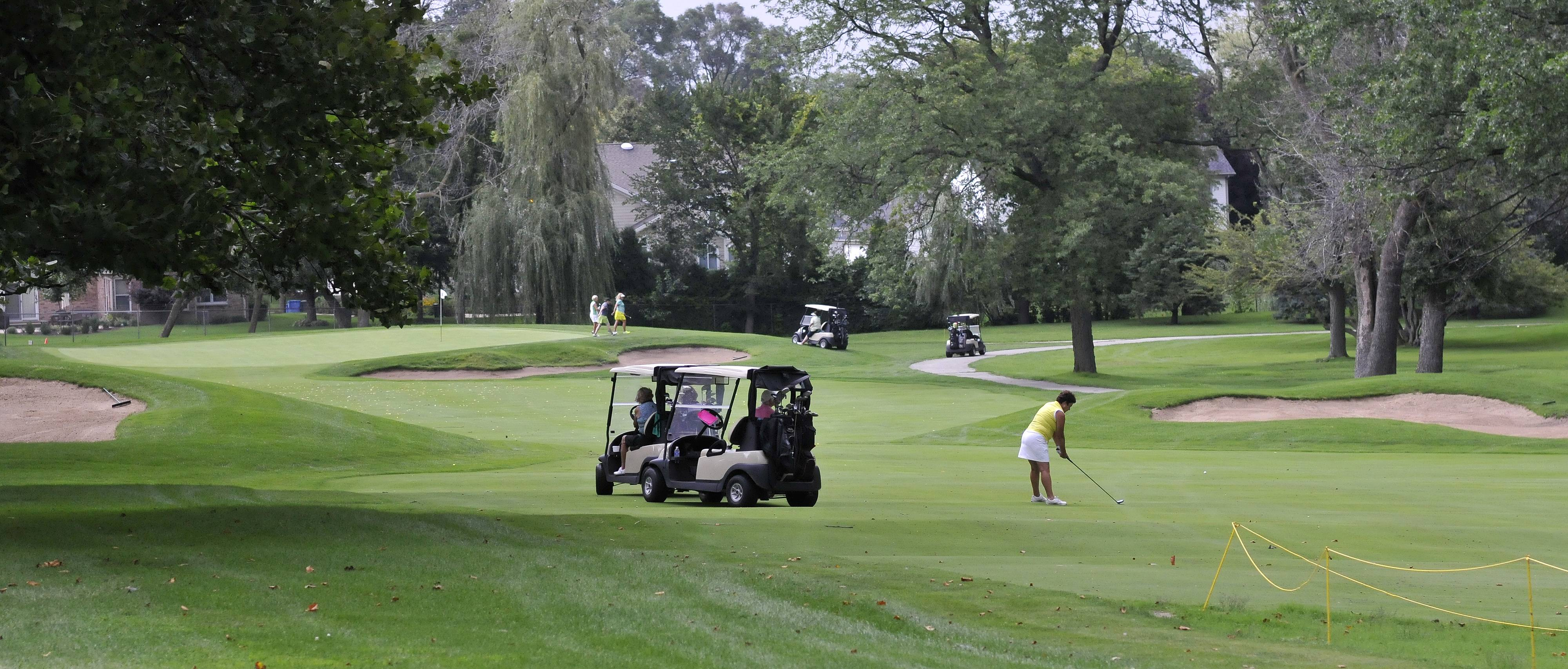 A group called Conserve Itasca Open Space wants to see the Itasca Country Club protected from development.