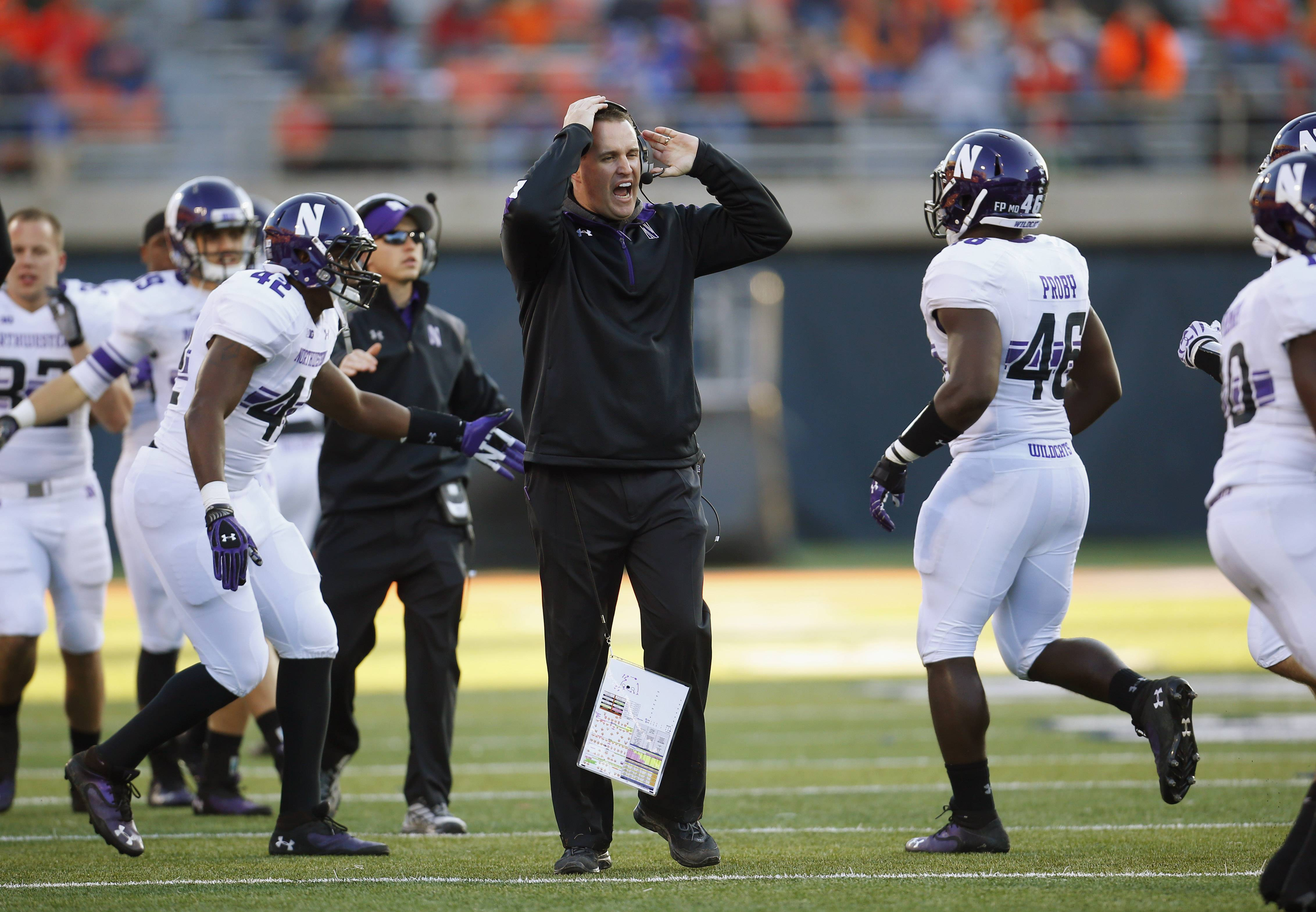 FILE - In this Nov. 30, 2013, file photo, Northwestern head coach Pat Fitzgerald yells at his team during an NCAA college football game against Illinois in Champaign, Ill. The Wildcats are coming off a disappointing 5-7 season and already hit hard by injuries and a key defection ahead of the Saturday, Aug. 30, 2014, opener at home against Cal. On top of that, they spent the offseason at ground zero in the debate over whether college players should have the right to unionize.