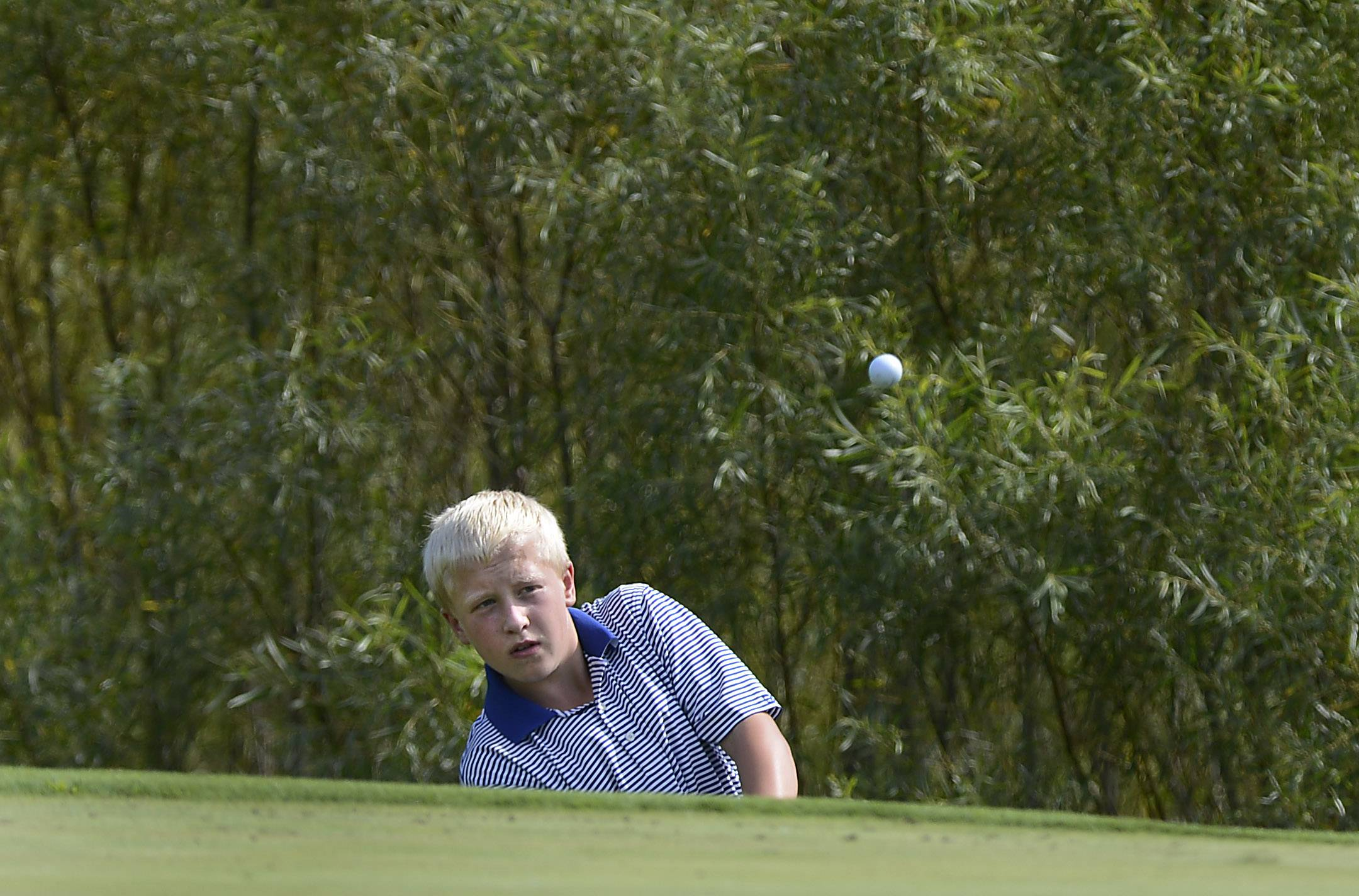 Larkin's Cy Kerber chips to the green Thursday at the Geneva boys golf invitational at Mill Creek Golf Club.