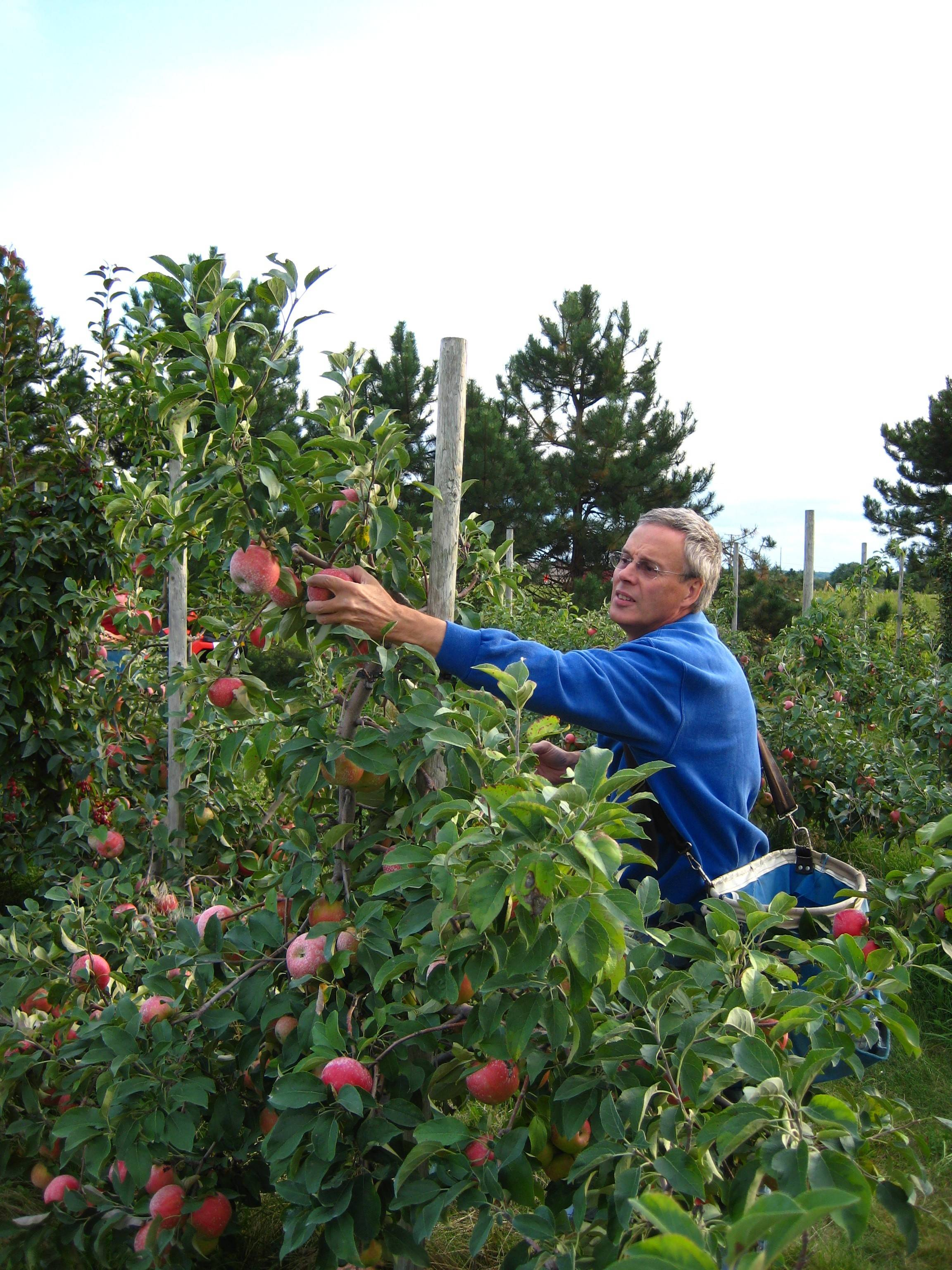 Apple-picking season will soon begin at Prairie Sky Orchard in Union.