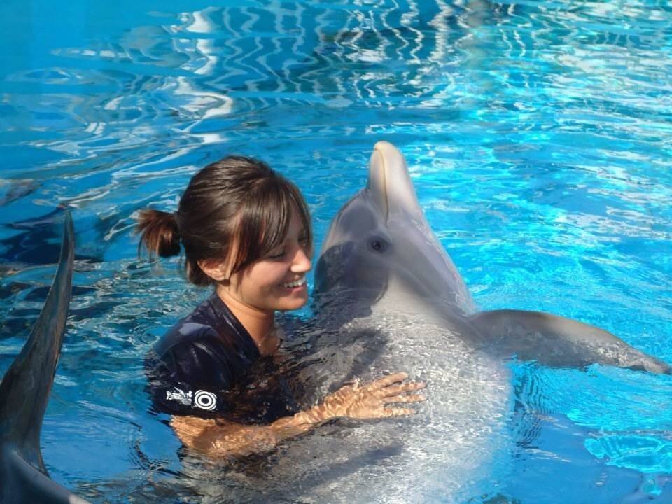 At home in the water, associate marine mammal trainer Mallory Marra, who grew up in Elk Grove Village, says she builds wonderful relationships with the dolphins at Clearwater Marine Aquarium in Florida.