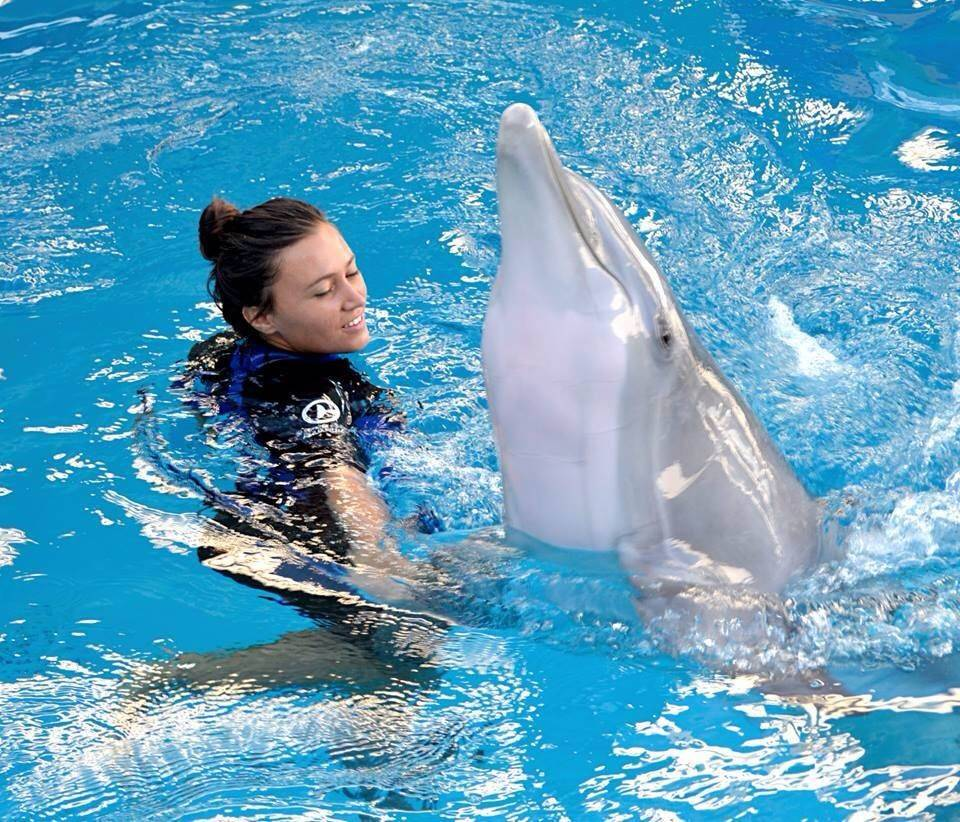 "As a little girl growing up in Elk Grove Village, Mallory Mara dreamed of being a dolphin trainer. Now the 23-year-old does that professionally at Clearwater Marine Aquarium in Florida, the setting for the movies ""Dolphin Tale"" and ""Dolphin Tale 2."""