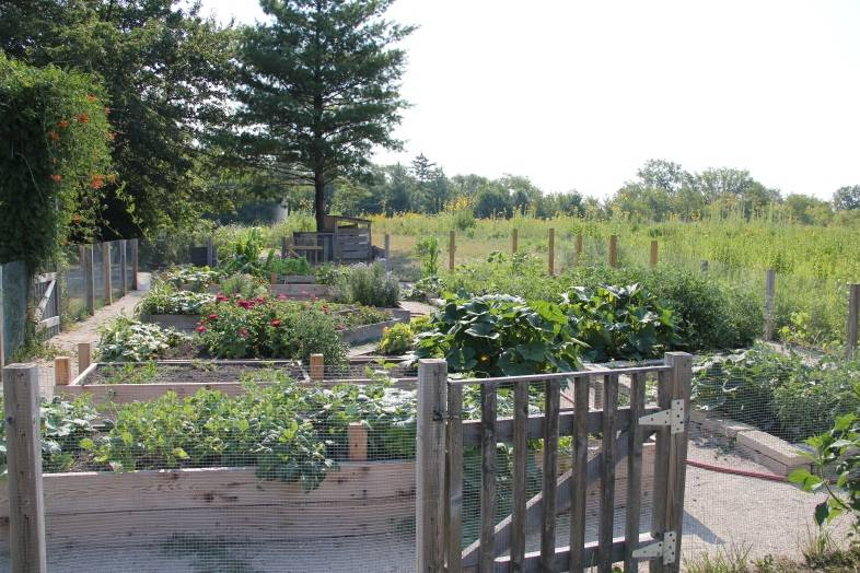 The Kids' Garden was planted by students at the end of the school year and maintained through summer by Spring Valley camps.Schaumburg Park District