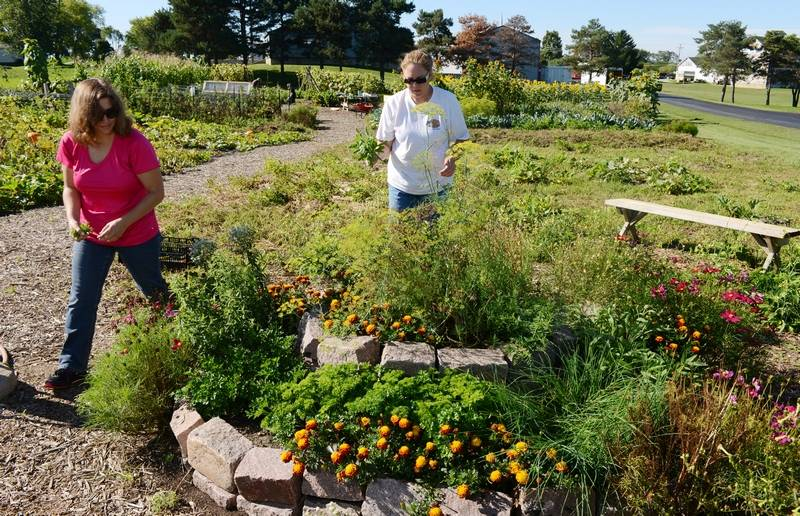 Mundelein group teaches others about self-sufficiency through ...