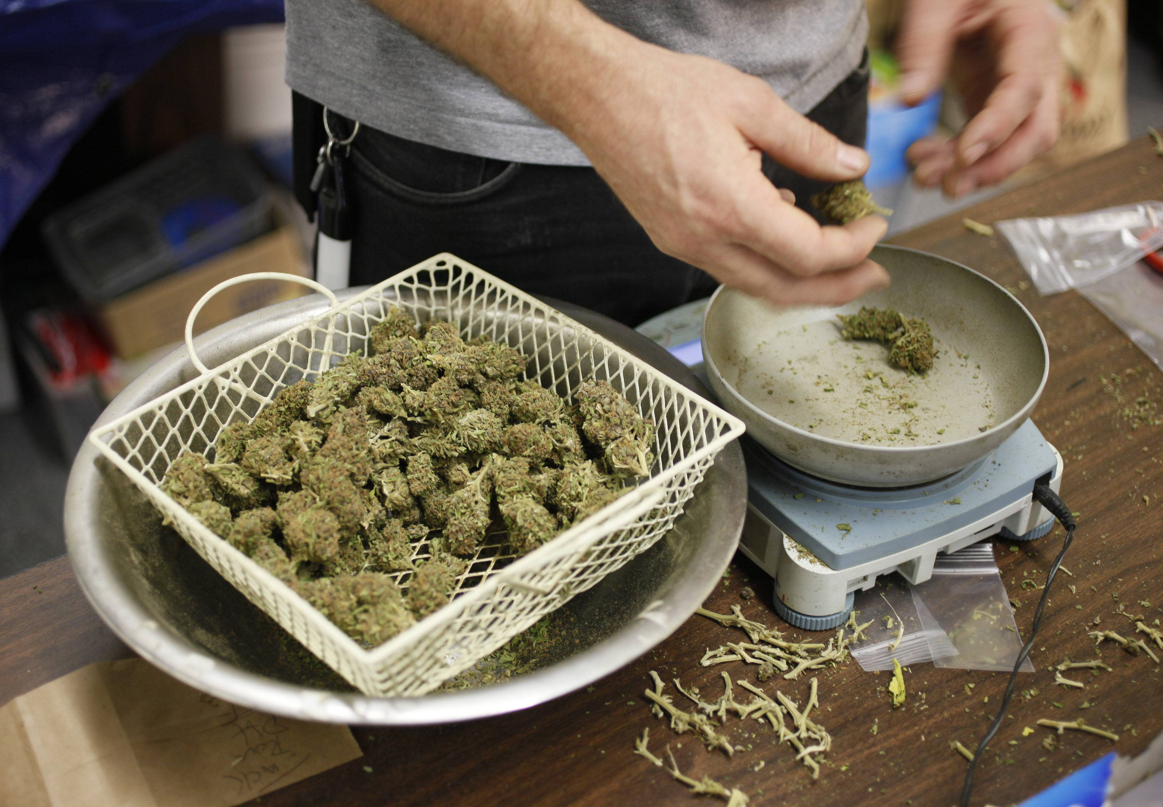 Mt. Prospect won't hold public hearings over pot dispensaries
