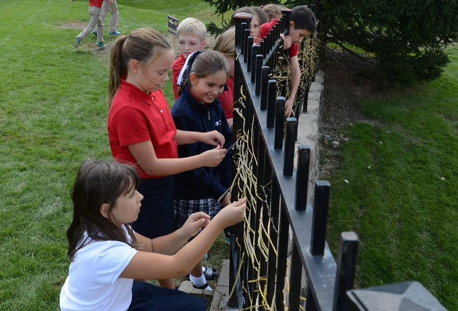 Holy Family School fourth-graders Eliza Incledon, left, Keira Kellar and Aubrey Thiem weave willow branches creating a natural fence in their outdoor classroom.