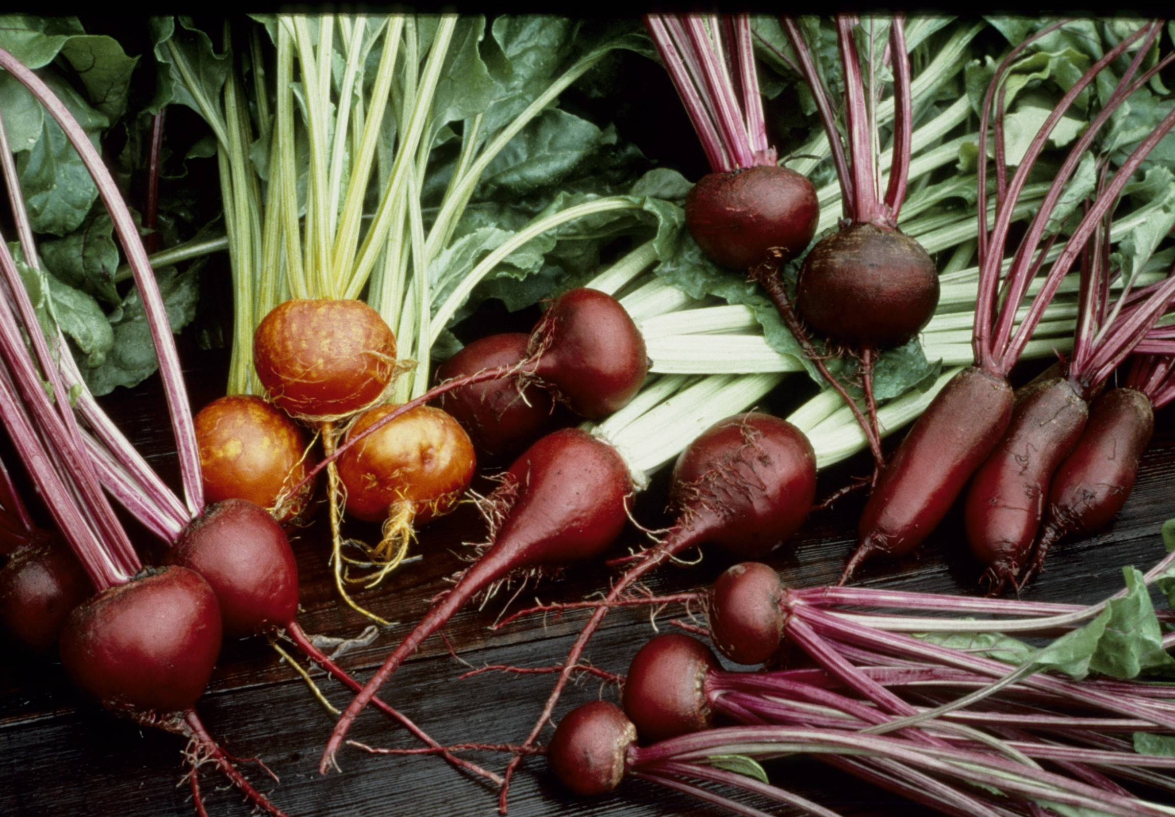 The many different varieties and colors of beets adds to the fun of growing and cooking with them.