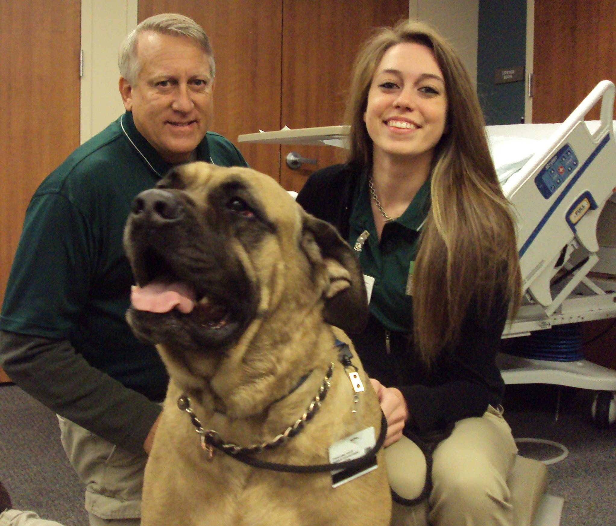Father and daughter Jim and Colleen McKay, of Arlington Heights, with their African Mastiff Lenny, who is rarin' to go.