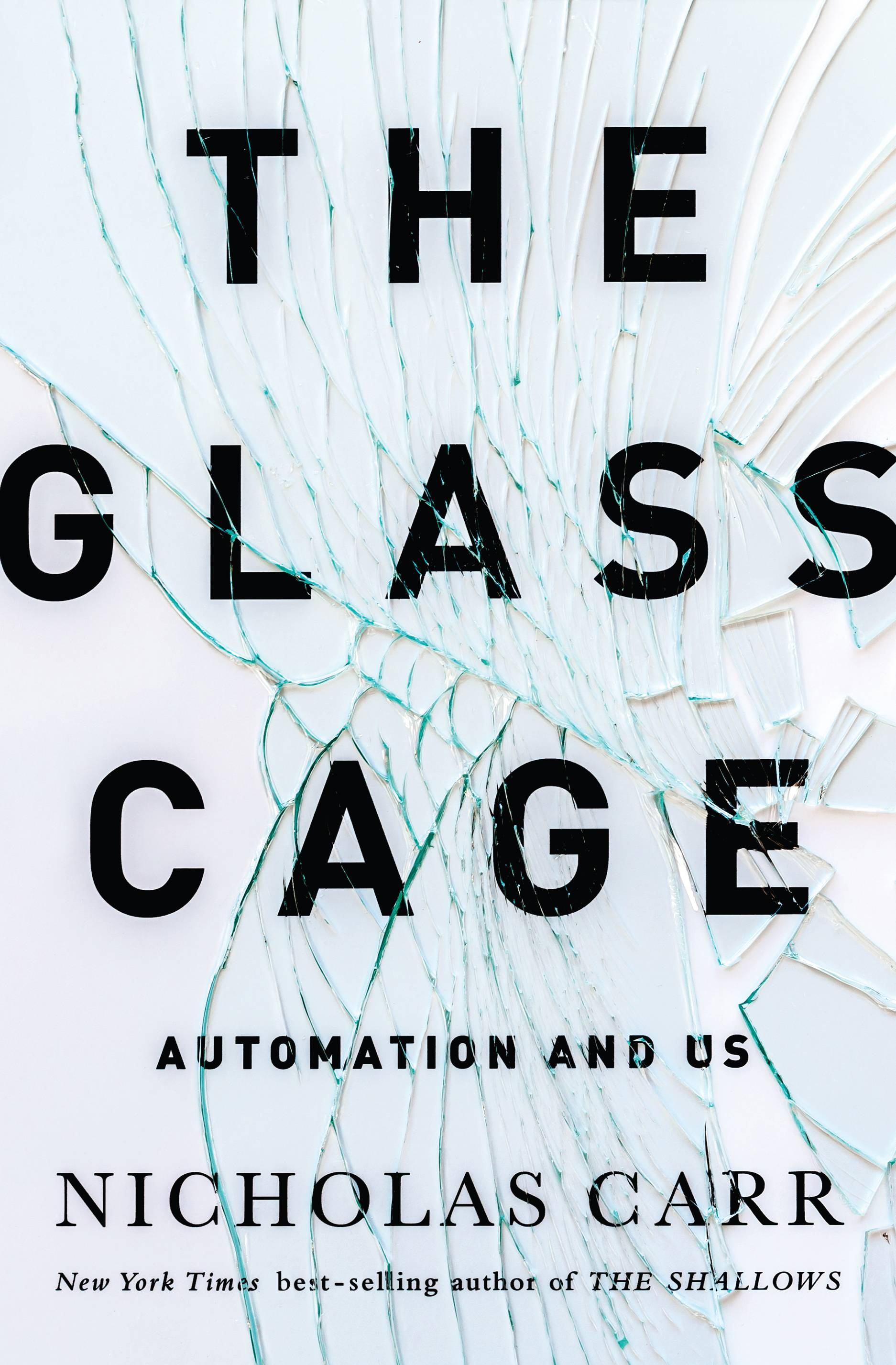 "Nicholas Carr questions whether we've lost skills because of our reliance on technology in ""The Glass Cage: Automation and Us."""