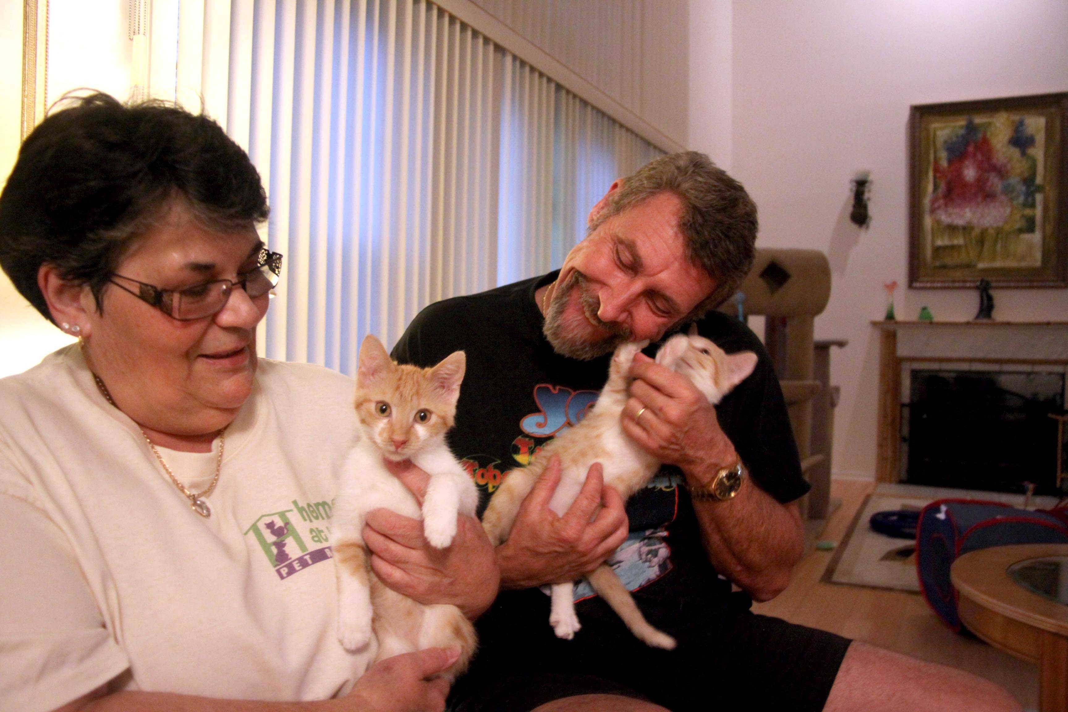 Peggy Aaland and her husband, Ken, of Hoffman Estates in July launched the Home At Last foster-based pet rescue. Peggy served in various capacities at the Strays Halfway House before starting Home At Last.