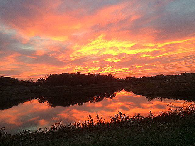 This is a sunrise at Meachem Grove Forest Preserve on the morning of October 27.