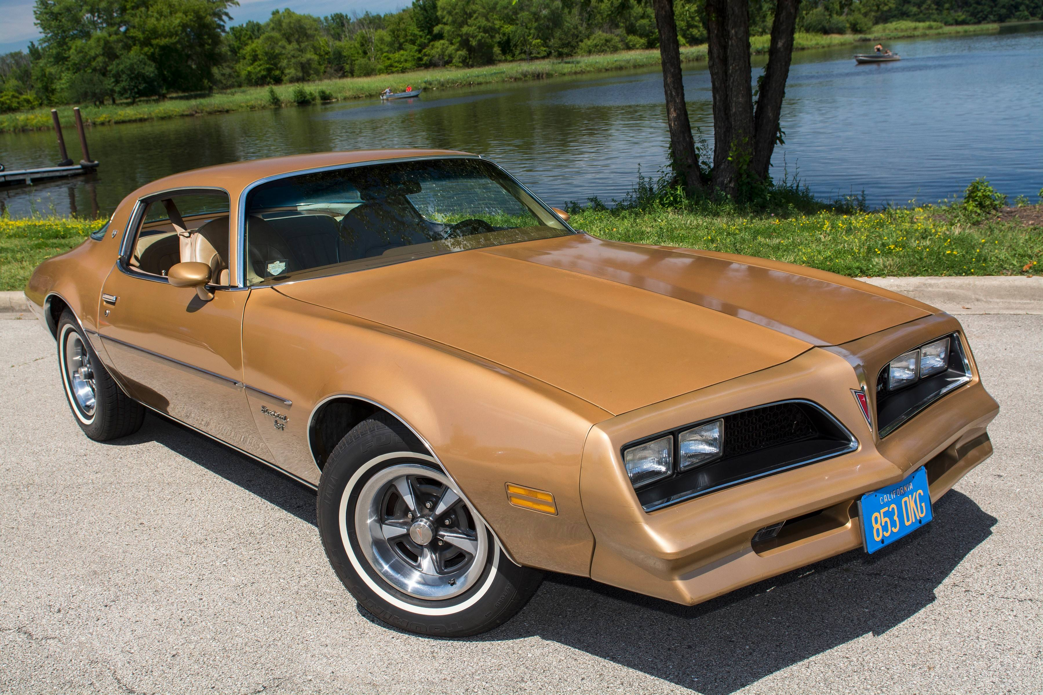 Firebird is an every-man's car with Hollywood charisma