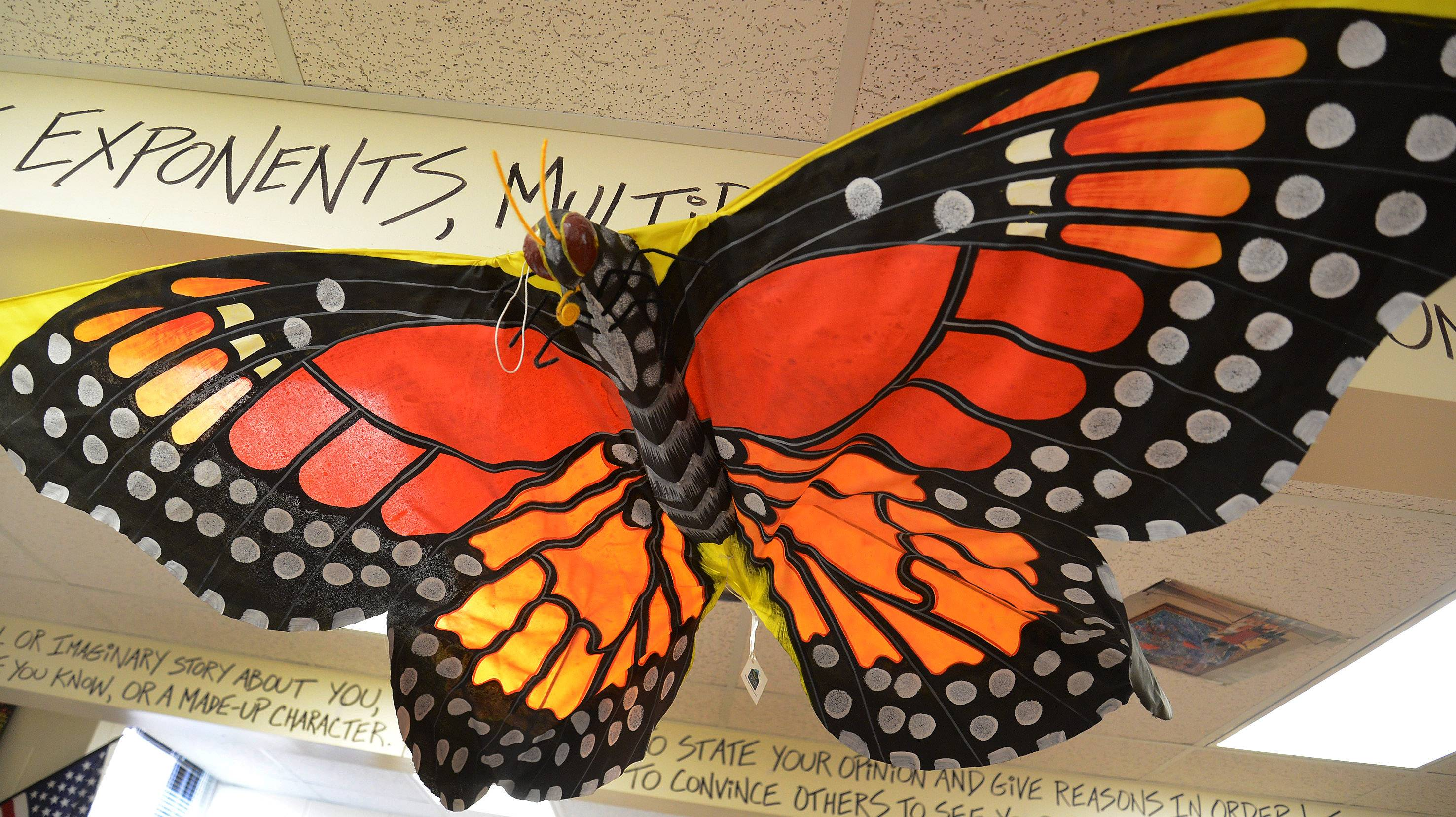 A giant illustration of a monarch butterfly hangs from the ceiling in Kim Savino's classroom.