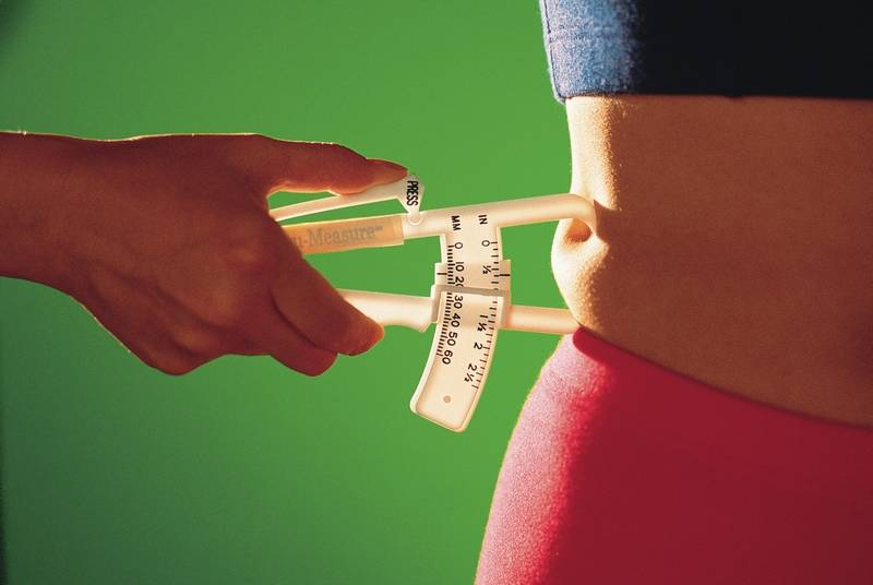 Lose Weight Low Carb Or Low Calorie