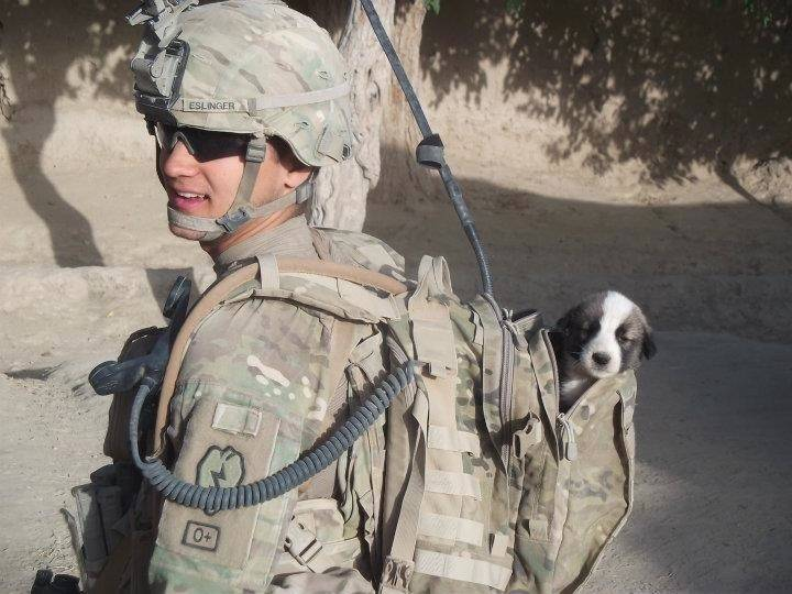 A nonprofit group reunites soldiers with the stray dogs they adopted during combat, including Army Pfc. Donny Eslinger's Afghan puppy, Smoke, credited with helping the Alabama native recover from a traumatic brain injury.