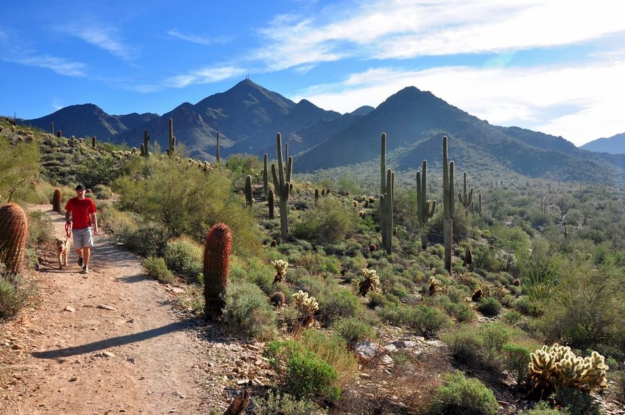 The McDowell Sonoran Preserve near Scottsdale, Ariz., has a trail for every fitness level. The Gateway Loop is among the easiest.